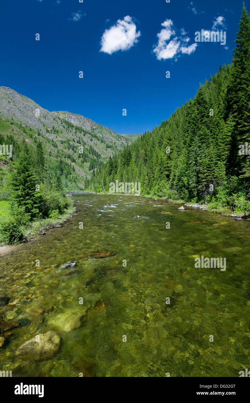 Kelly Creek in the Clearwater National Forest ID - Stock Image