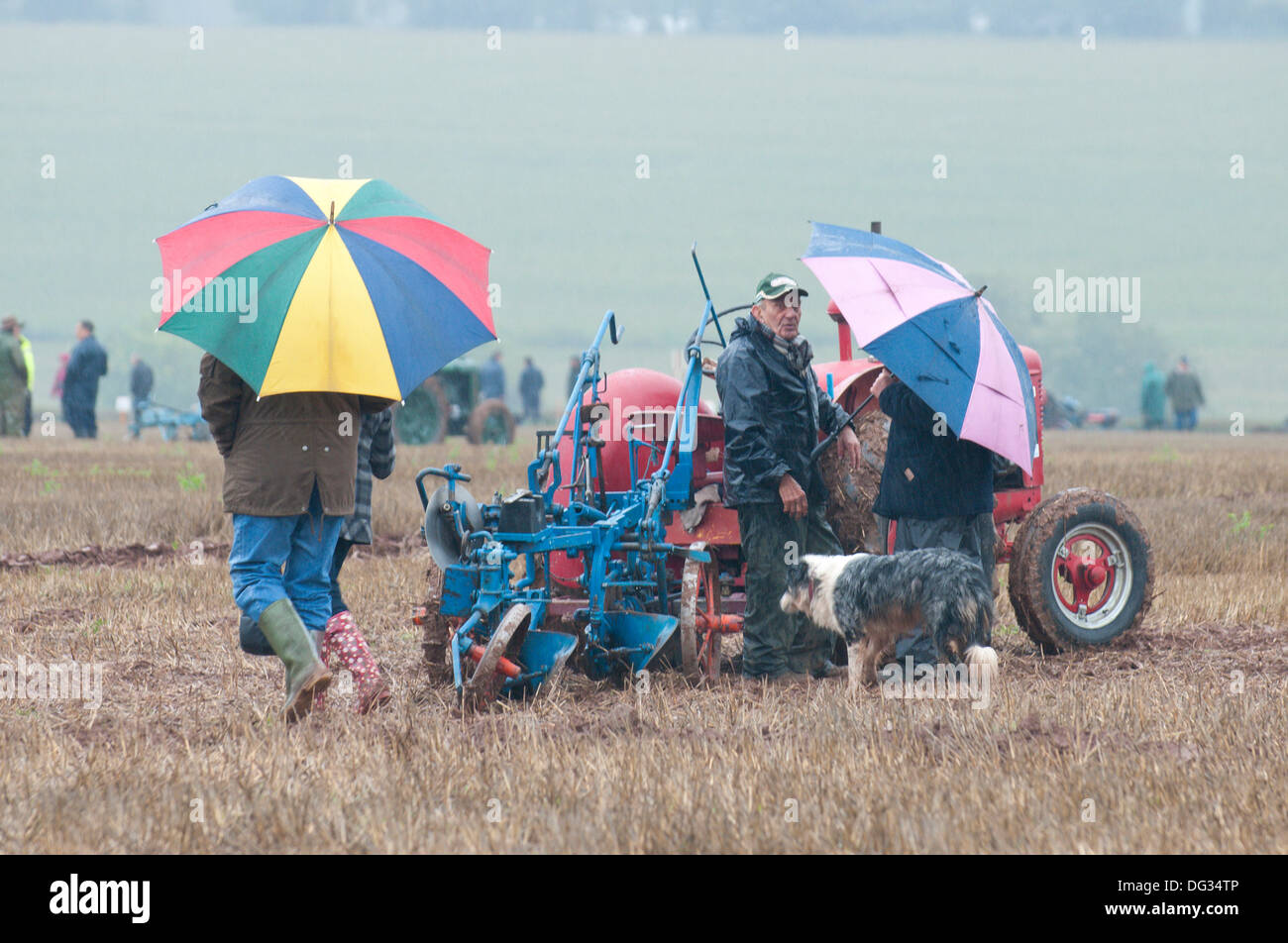 Llanwarne, Herefordshire, UK. 13th October 2013. Despite the rain stoicism and competitive spritit is evident on - Stock Image