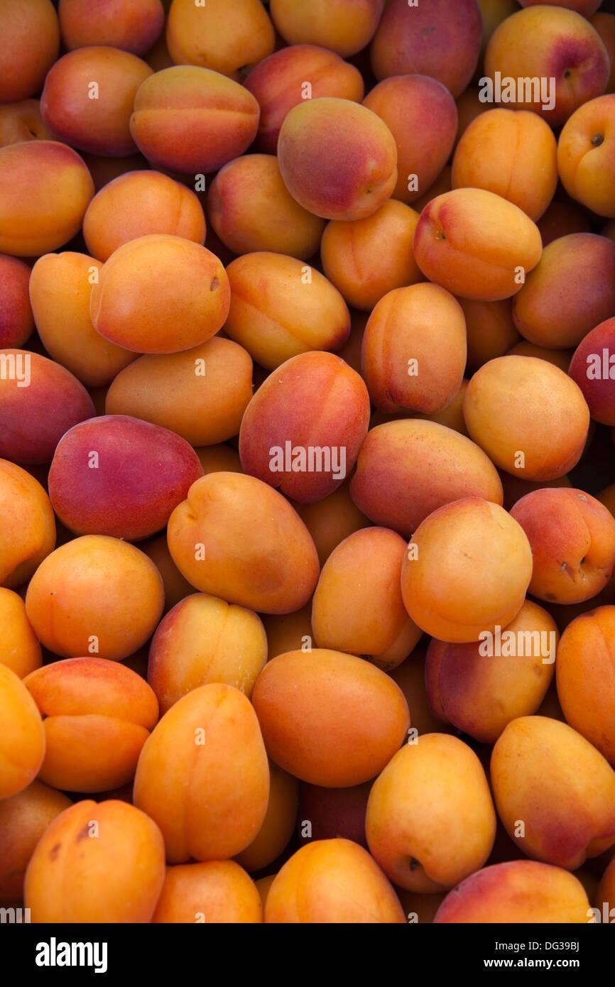 Apricots, Prunus armeniaca at a market stall, Hanover, Lower Saxony, Germany, Europe - Stock Image