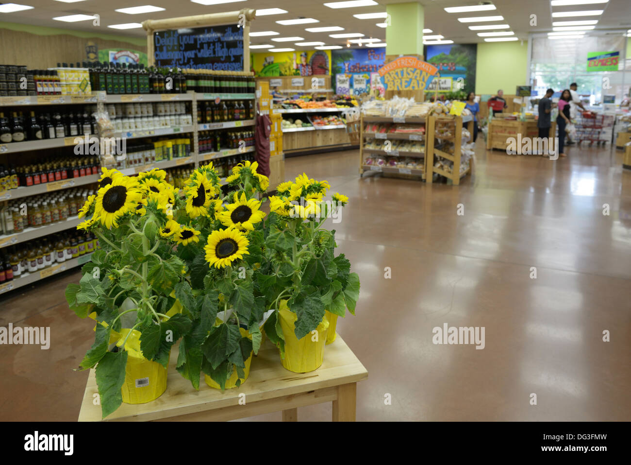 Trader Joe's supermarket - Stock Image