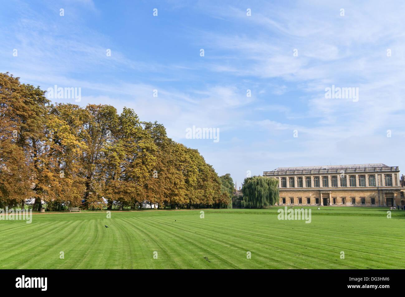 The Wren library Trinity College University of Cambridge seen with autumnal colours Cambridge, England, UK - Stock Image
