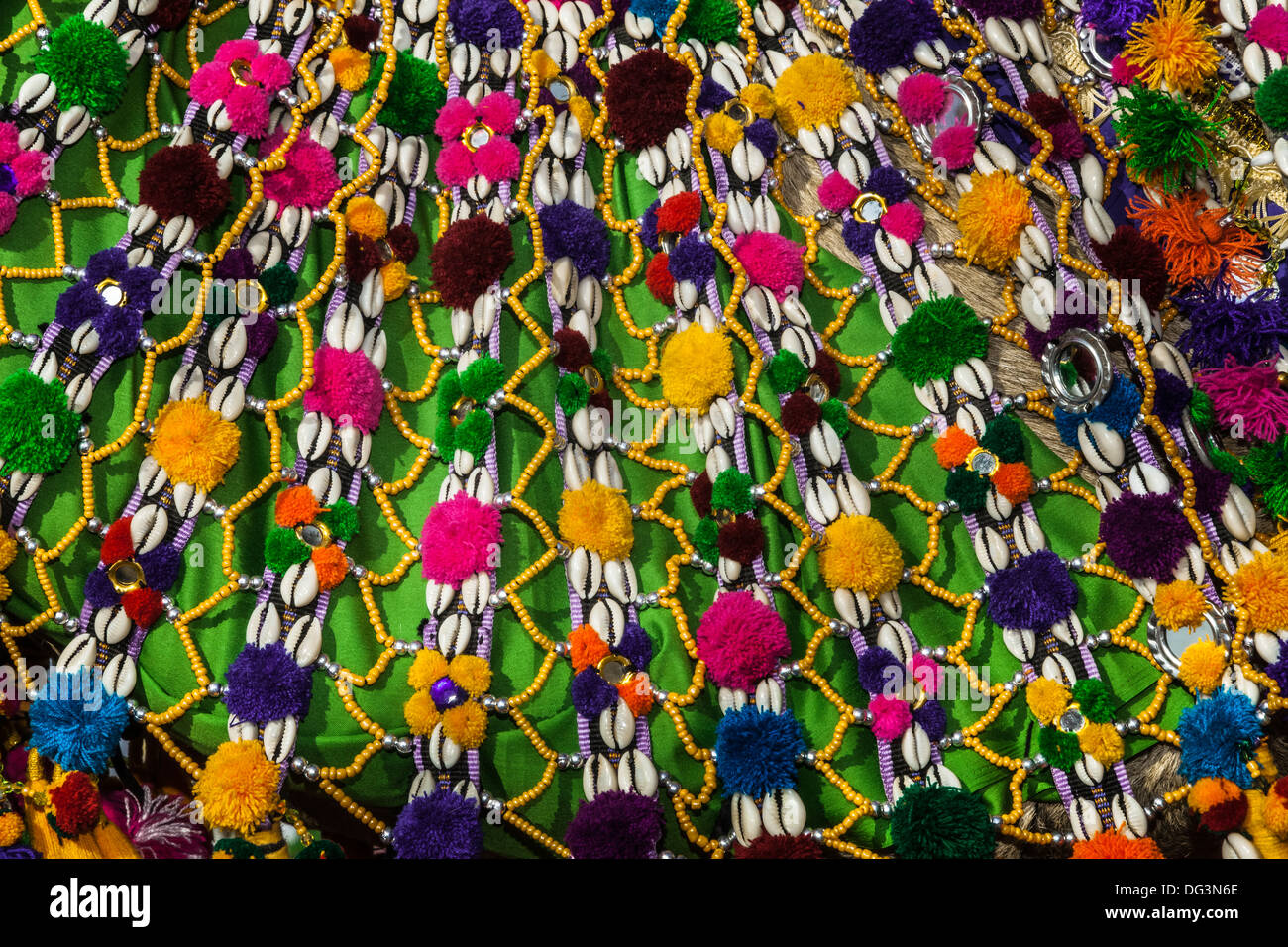 India, Rajasthan, Jaisalmer, decorative camel neckware with cowrie shells - Stock Image