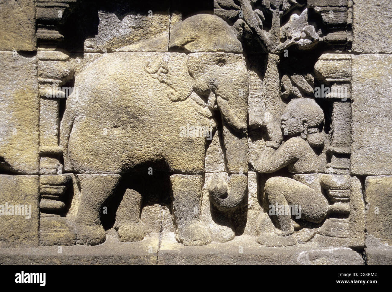 Elephant carvings stock photos