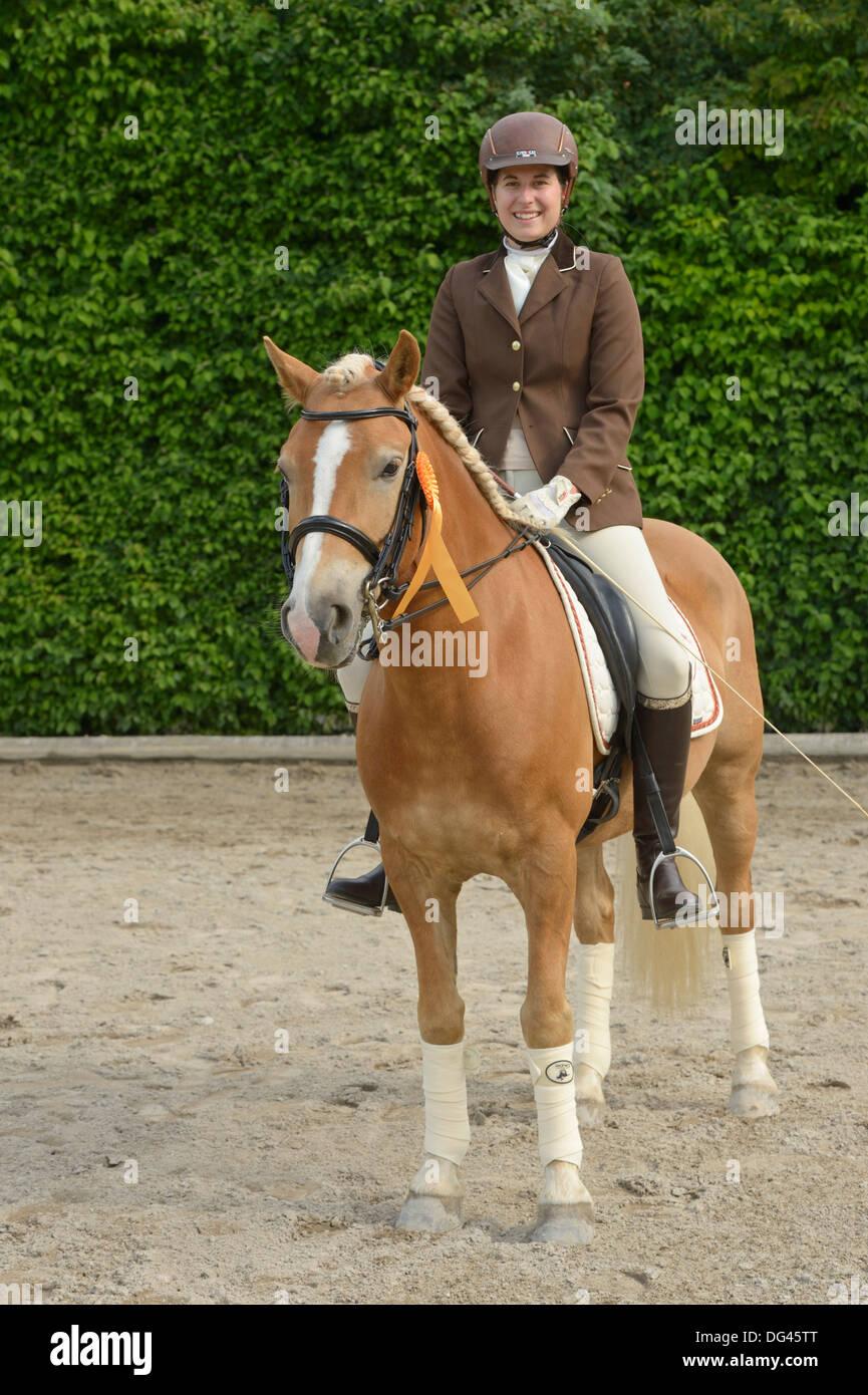 Dressage rider on Haflinger horse, winner of competition - Stock Image