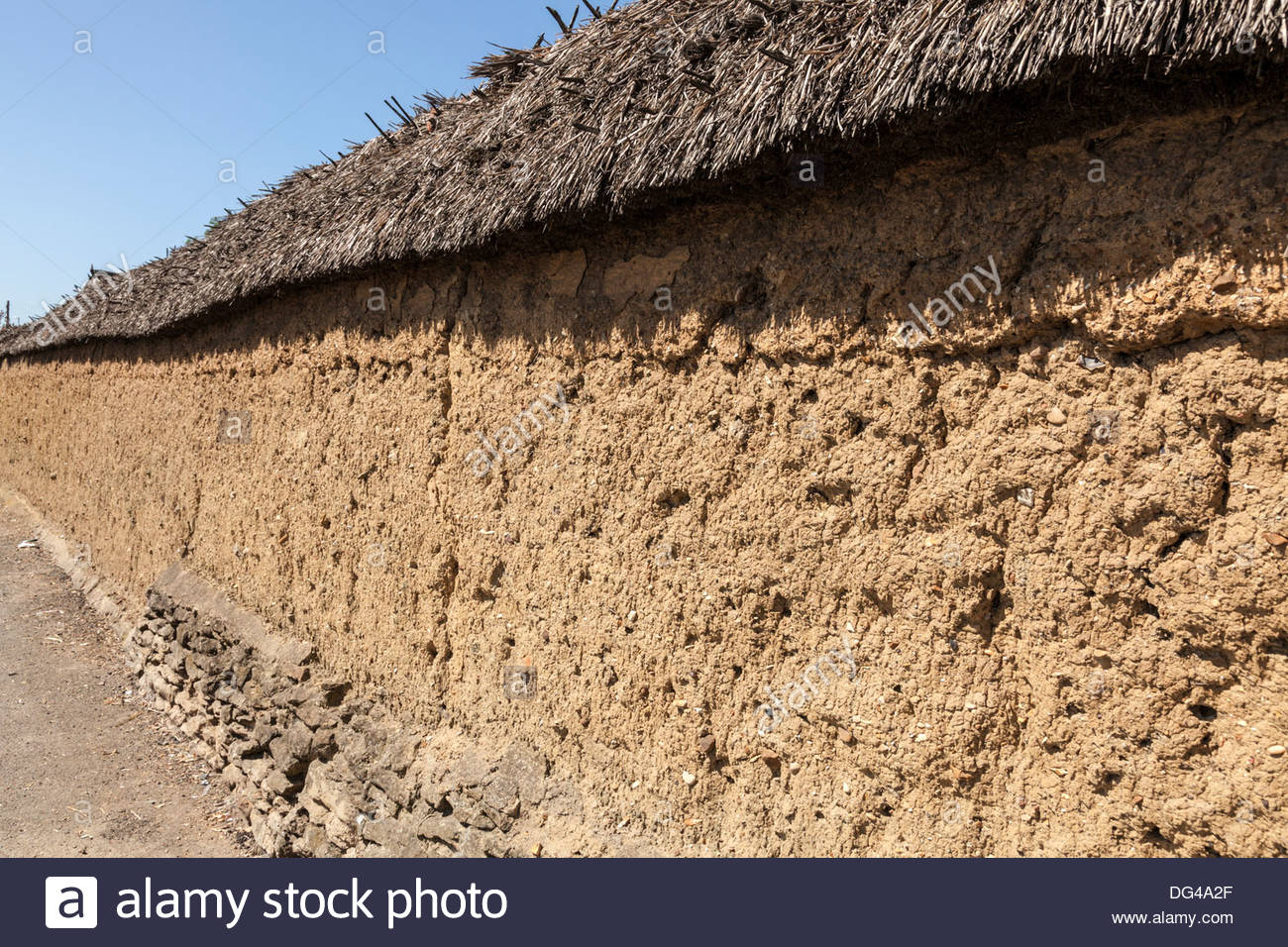 Grade II listed thatched wall in Whittlesey, Cambridgeshire, England, UK - Stock Image