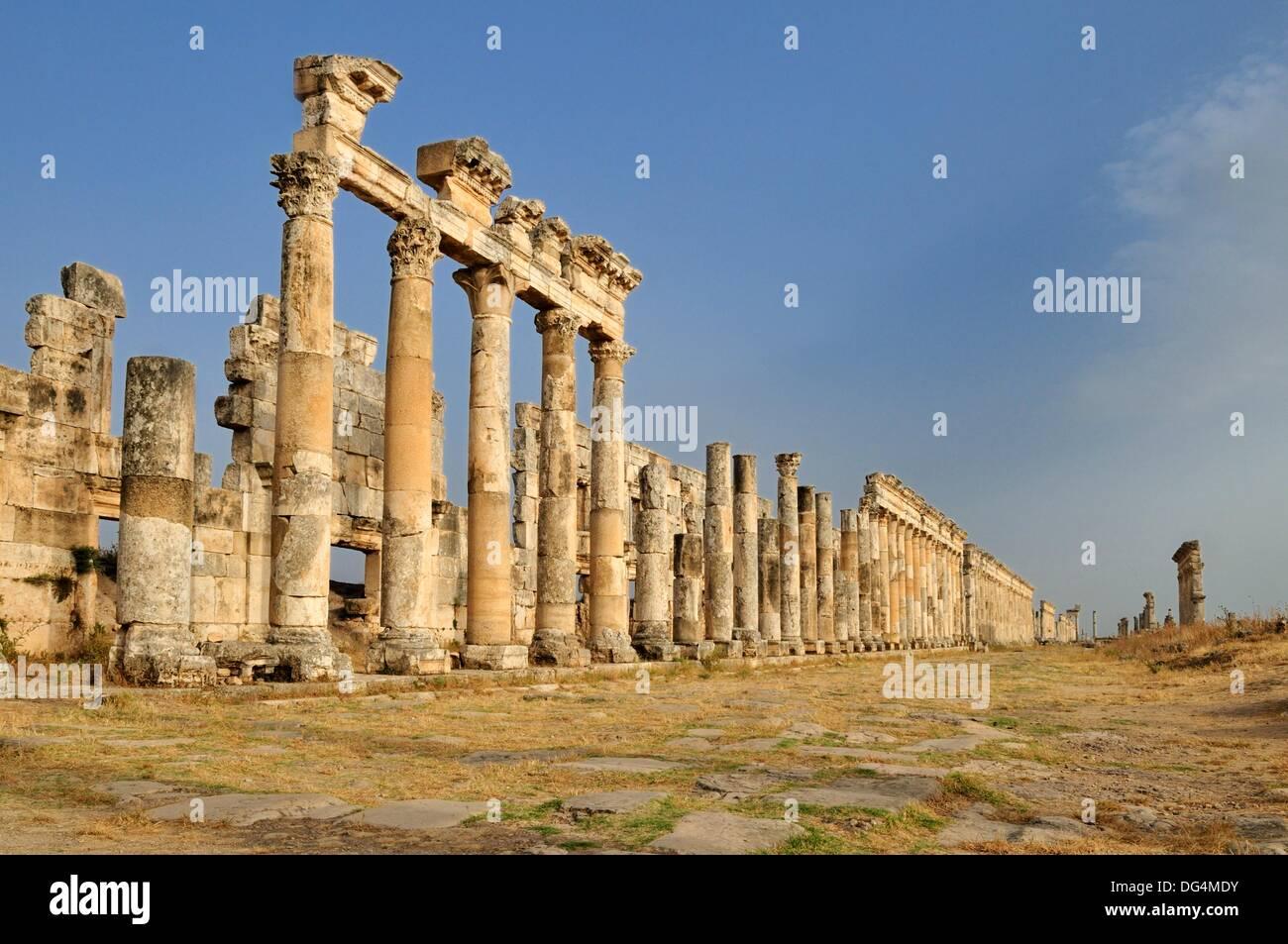 ruins at the roman archeological site of Apameia, Apamea, Qalaat al Mudiq, Syria, Middle East, West Asia - Stock Image