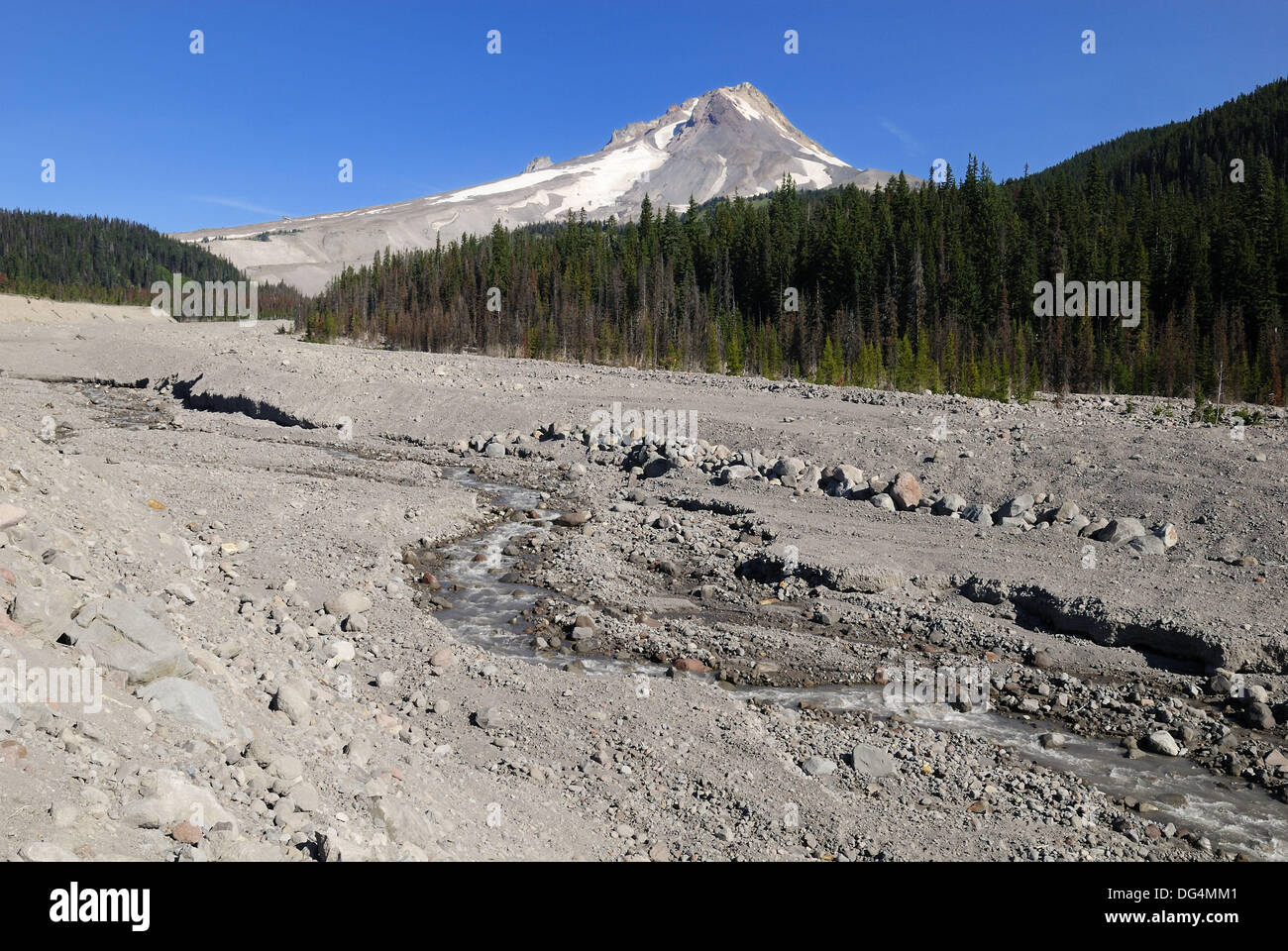 White River Gorge with Mount Hood volcanoe, Cascade Range, Oregon, USA Stock Photo