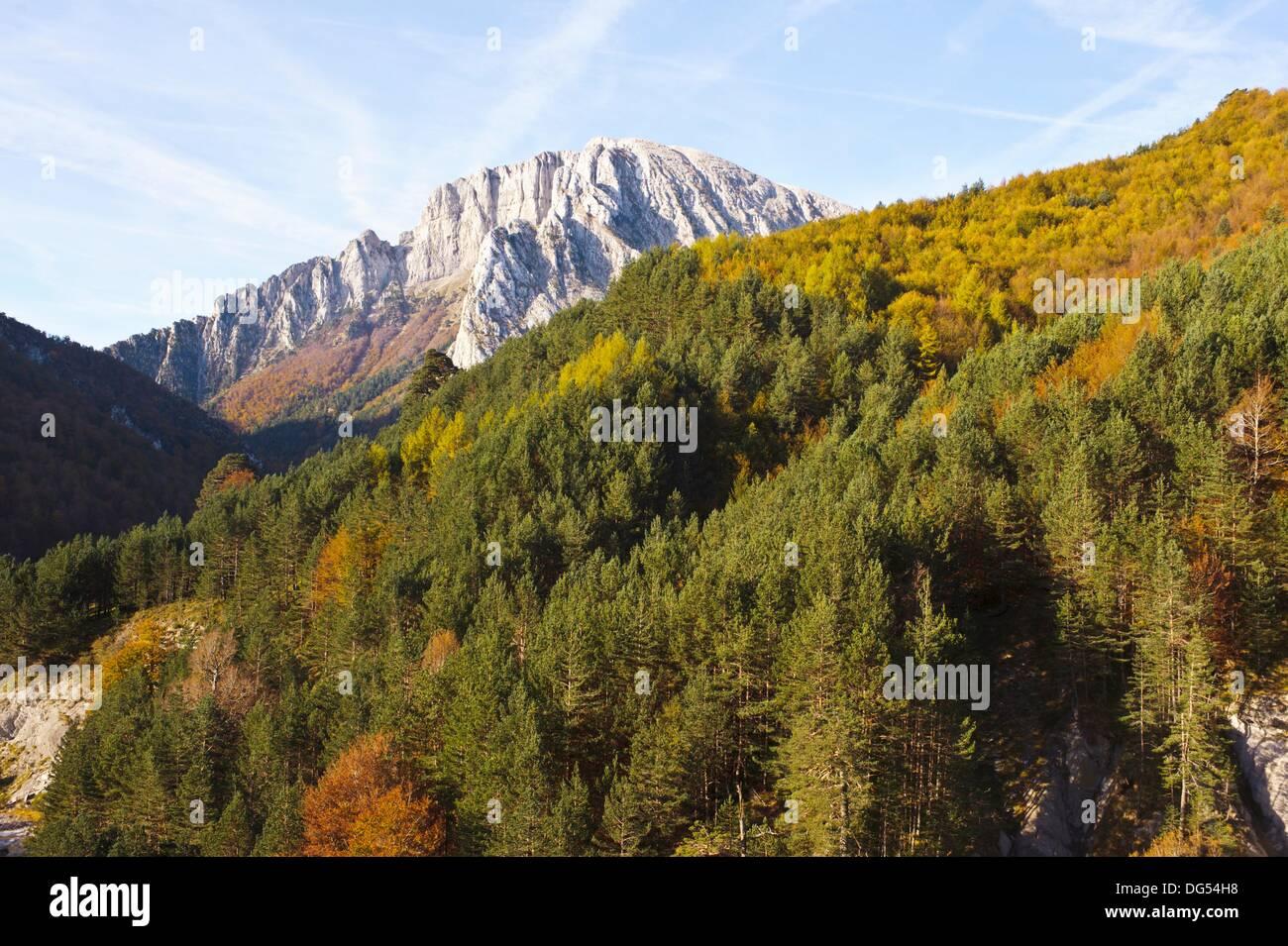 Zurita, Valle de Ansó, Parque Natural Valles Occidentales, Pyrenees, Huesca province, Aragon, Spain. - Stock Image