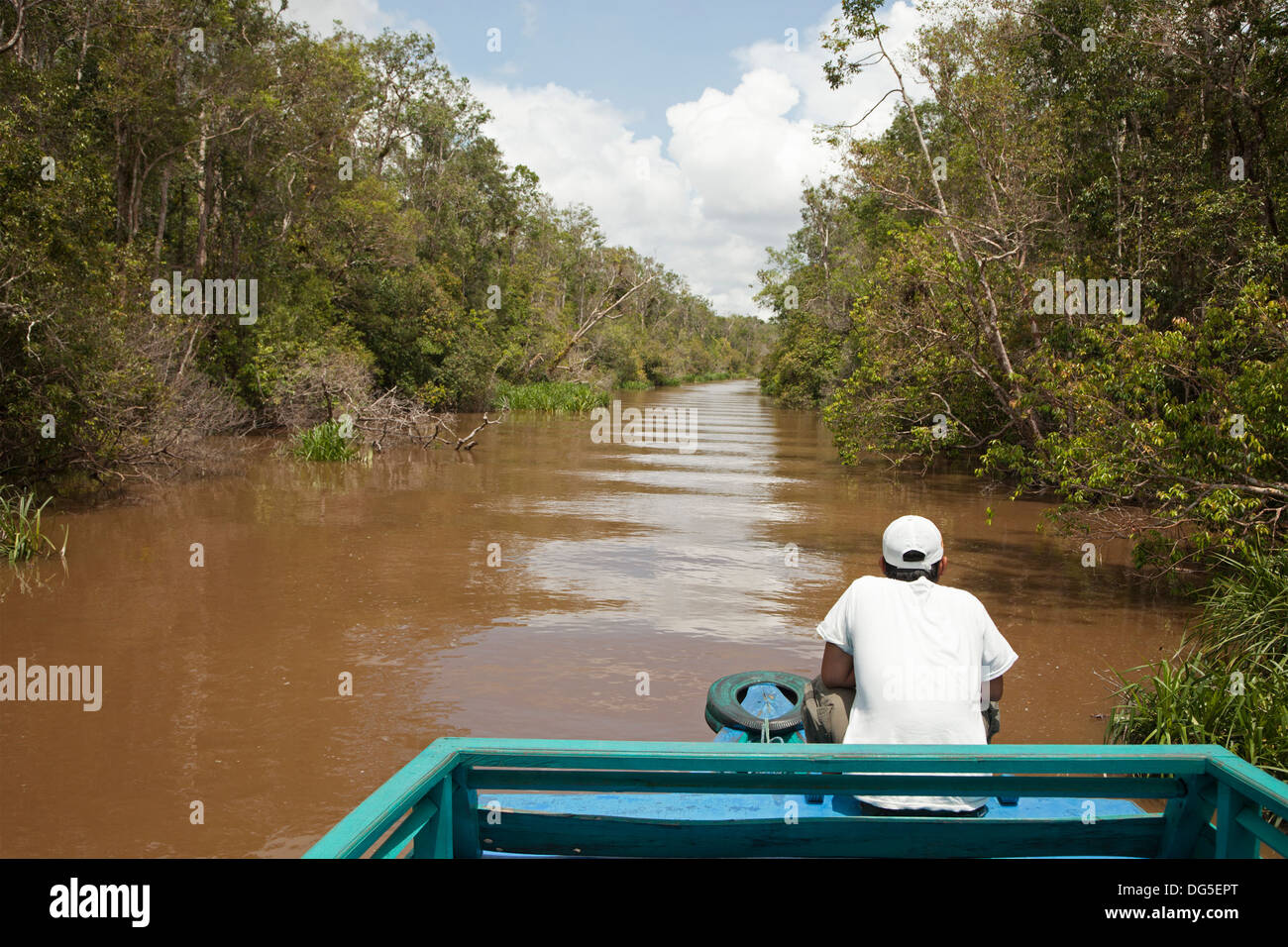 Indonesian ecotour guide sitting in a klotok, a traditional Indonesian river boat, on the Sekonyer River in Borneo. - Stock Image