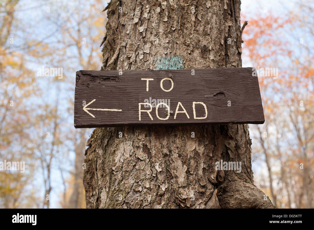 An arrow points to the nearby road along a trail at Mount Greylock State Park in Lanesboro Massachusetts. Stock Photo