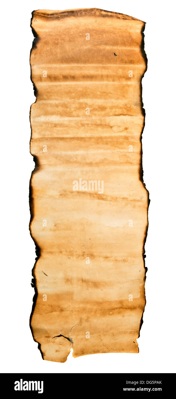 Vintage roll of parchment background - Stock Image