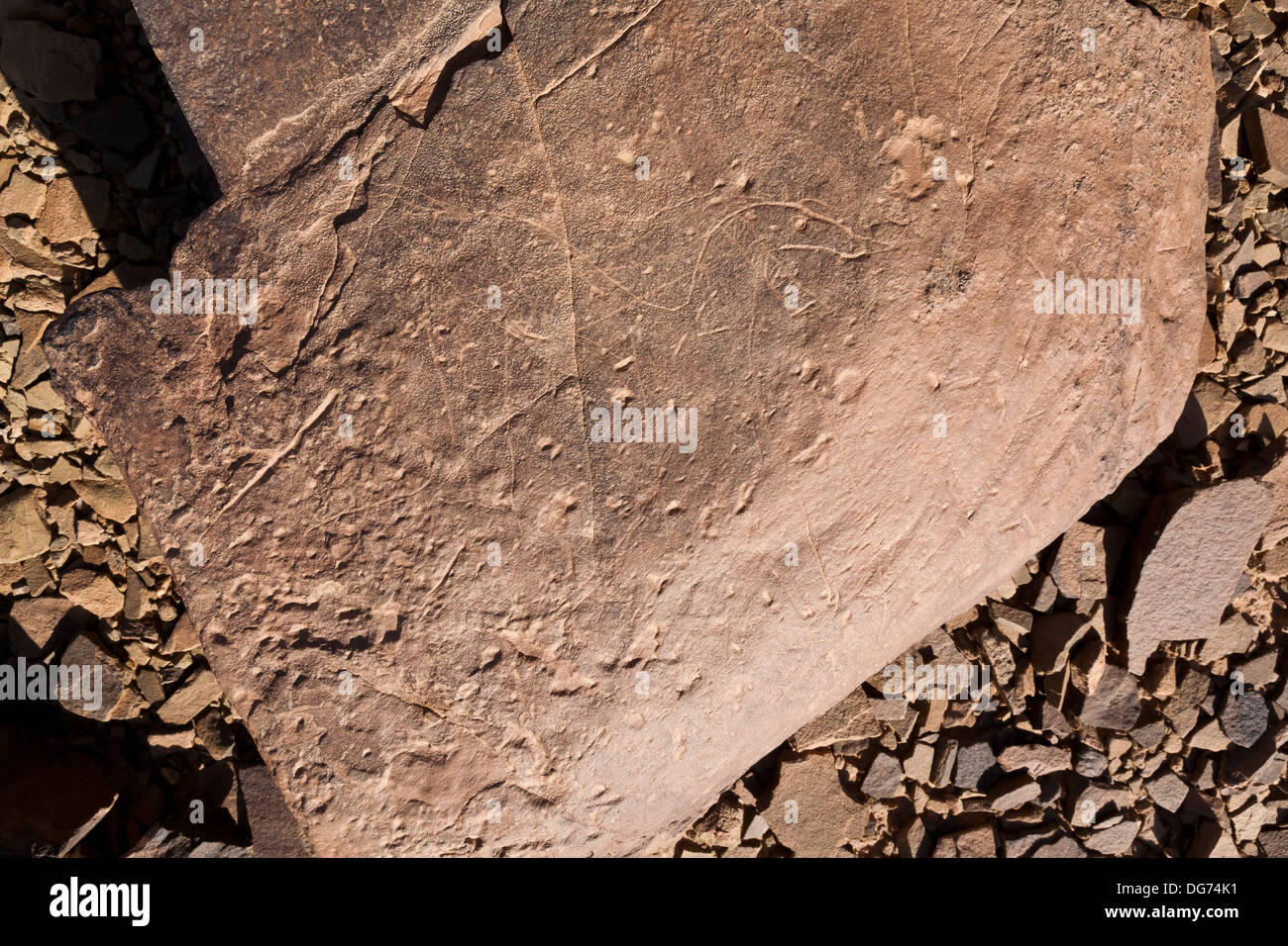 Prehistoric rock carvings at Aman Ighribin on the Tata to Akka road in Morocco - Stock Image