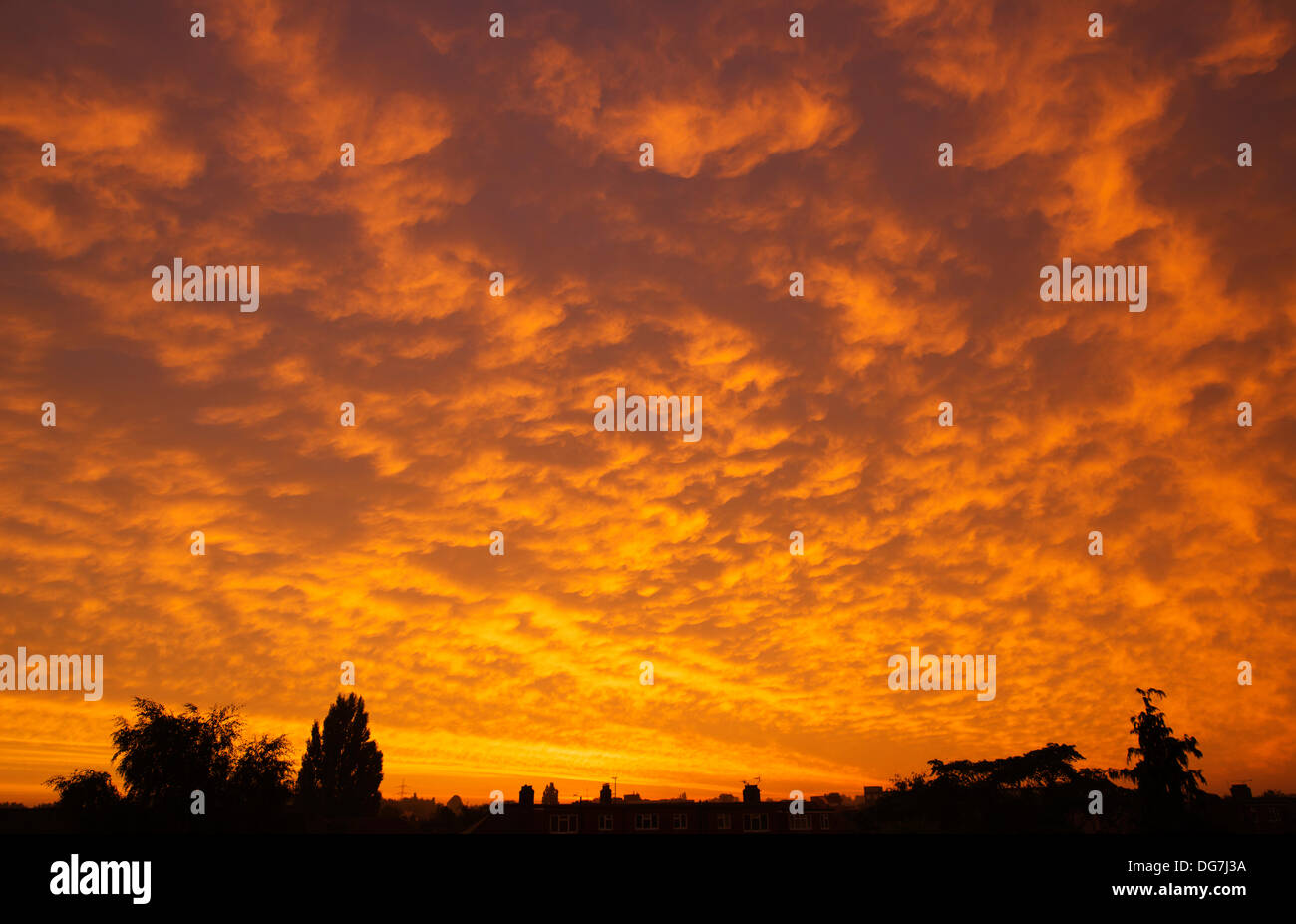 London, UK 16th Oct, 2013. A dramatic sunrise breaks over London this morning. Much of the country was expected to experience windy and wet weather by the end of the day. Credit:  Malcolm Park editorial/Alamy Live News - Stock Image