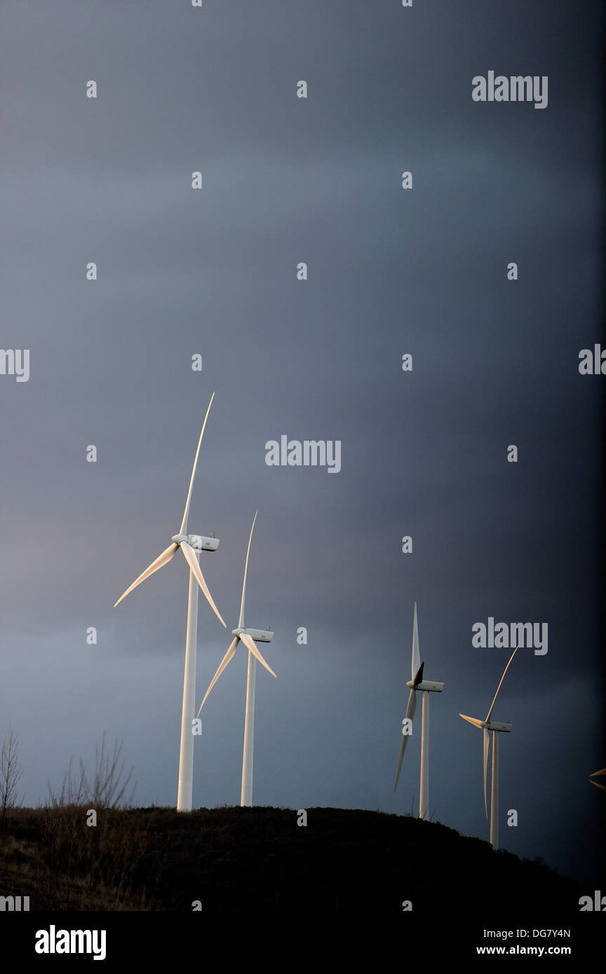 Wind turbines at sunset photographed - Stock Image