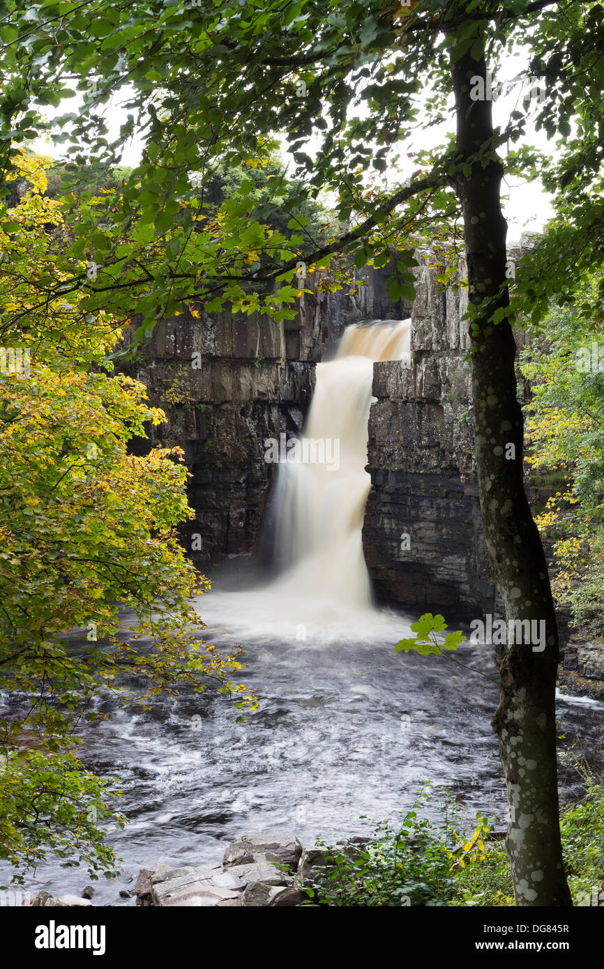 High Force and the River Tees in the Autumn Teesdale County Durham UK - Stock Image