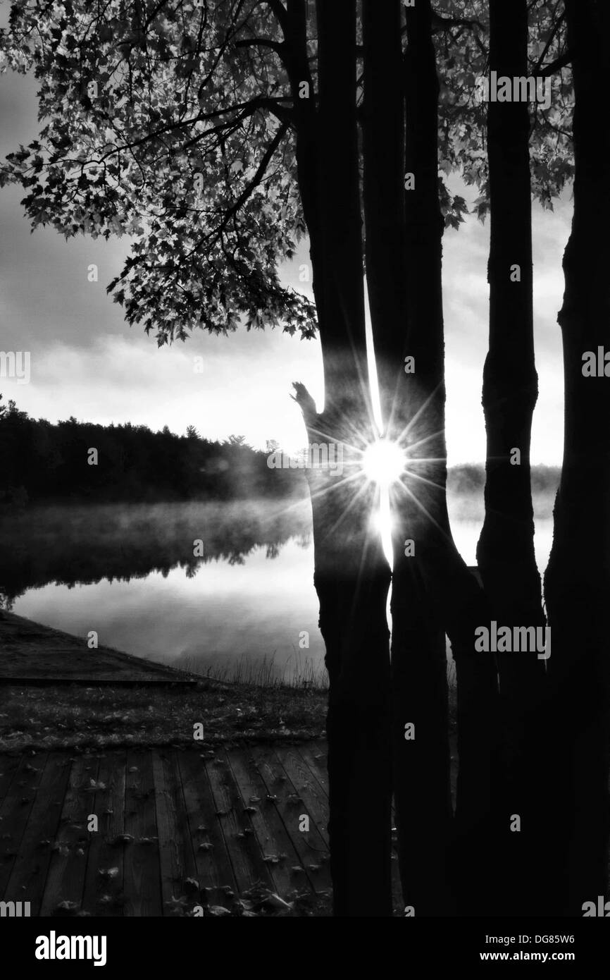Sunrise over lake with trees in silhouette - Stock Image