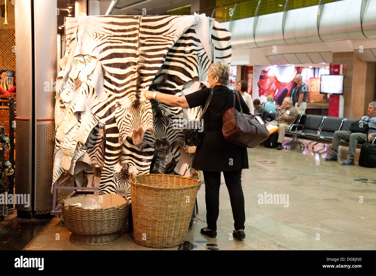 A woman air passenger looking at zebra skins in a gift shop, O. R. Tambo International Airport, Johannesburg airport departures terminal, South Africa - Stock Image