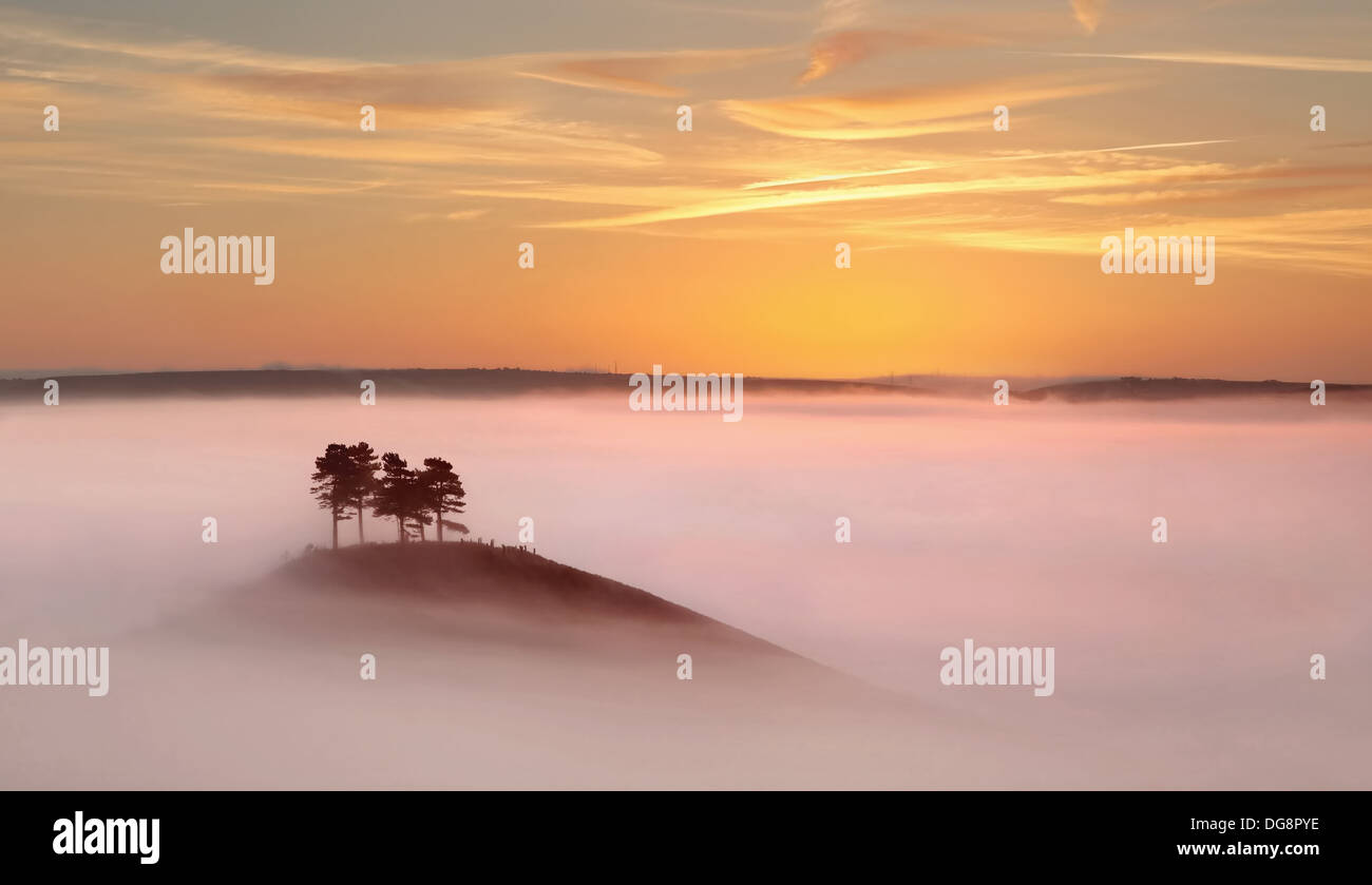 Colmer's Hill, west Dorset, just before sunrise in thick autumnal mists. - Stock Image