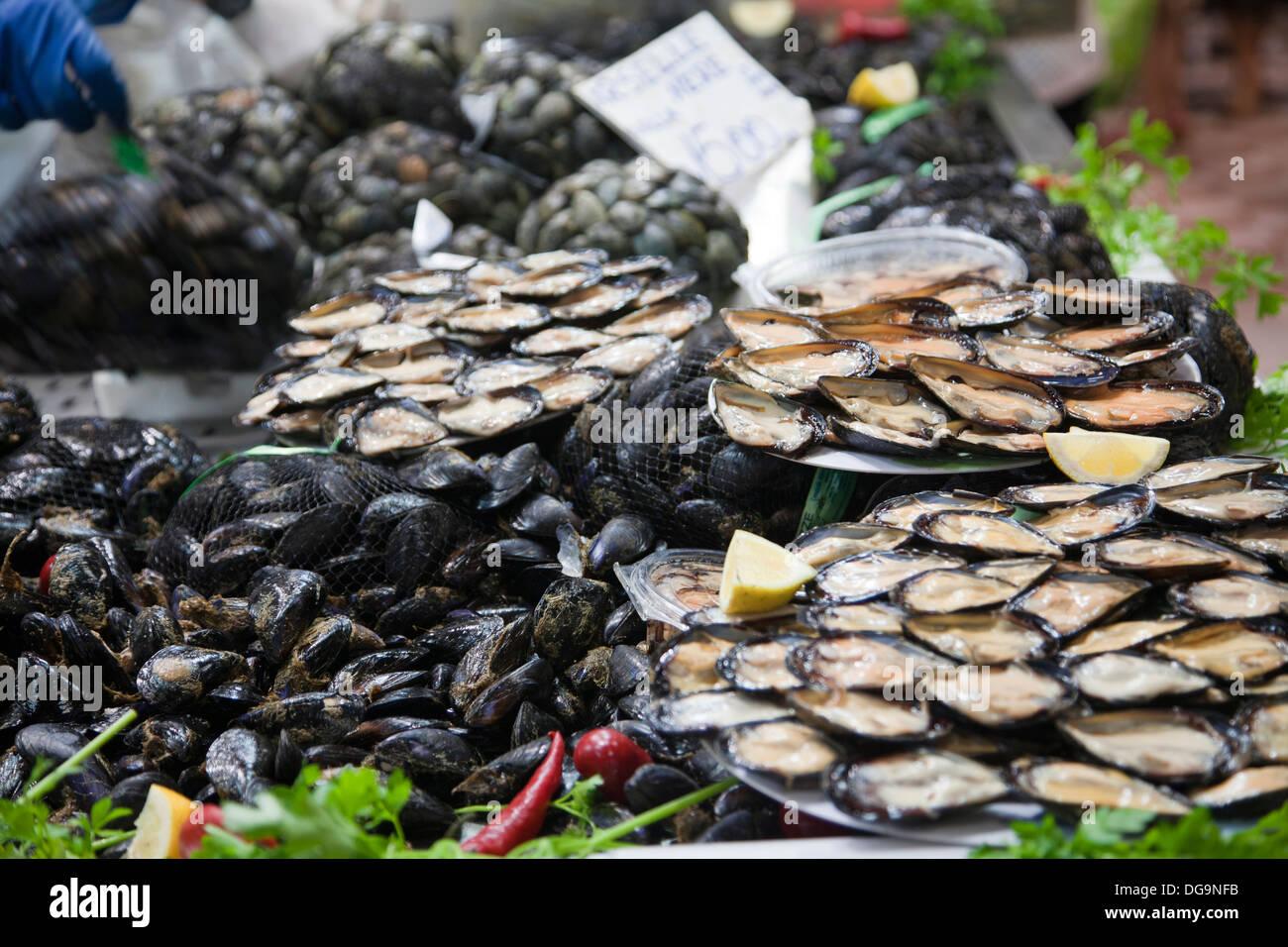 Mercato Comunale di San Benedetto in Cagliari - Shellfish - Sardinia - Stock Image