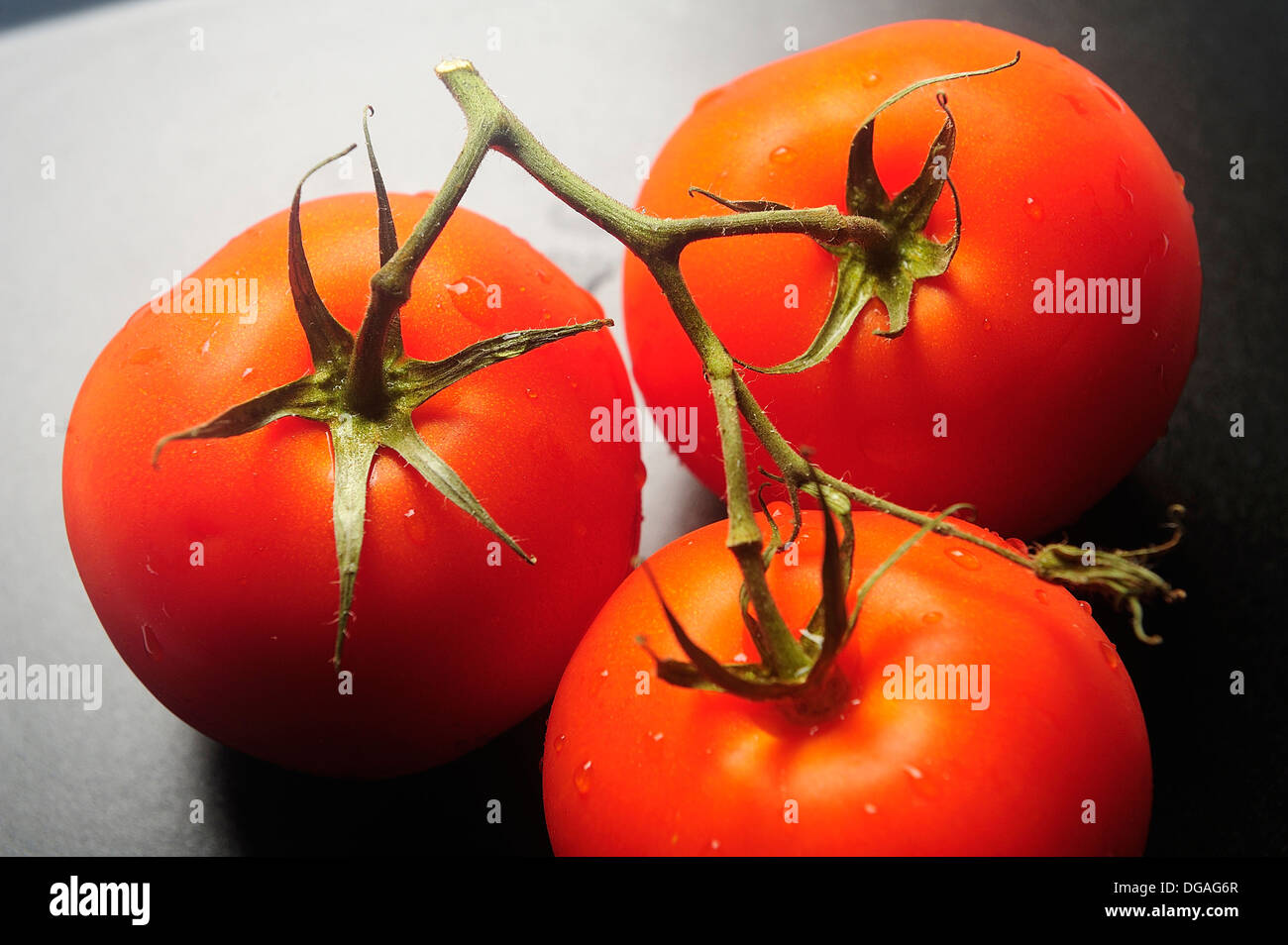 Photographed backlit red tomatoes - Stock Image