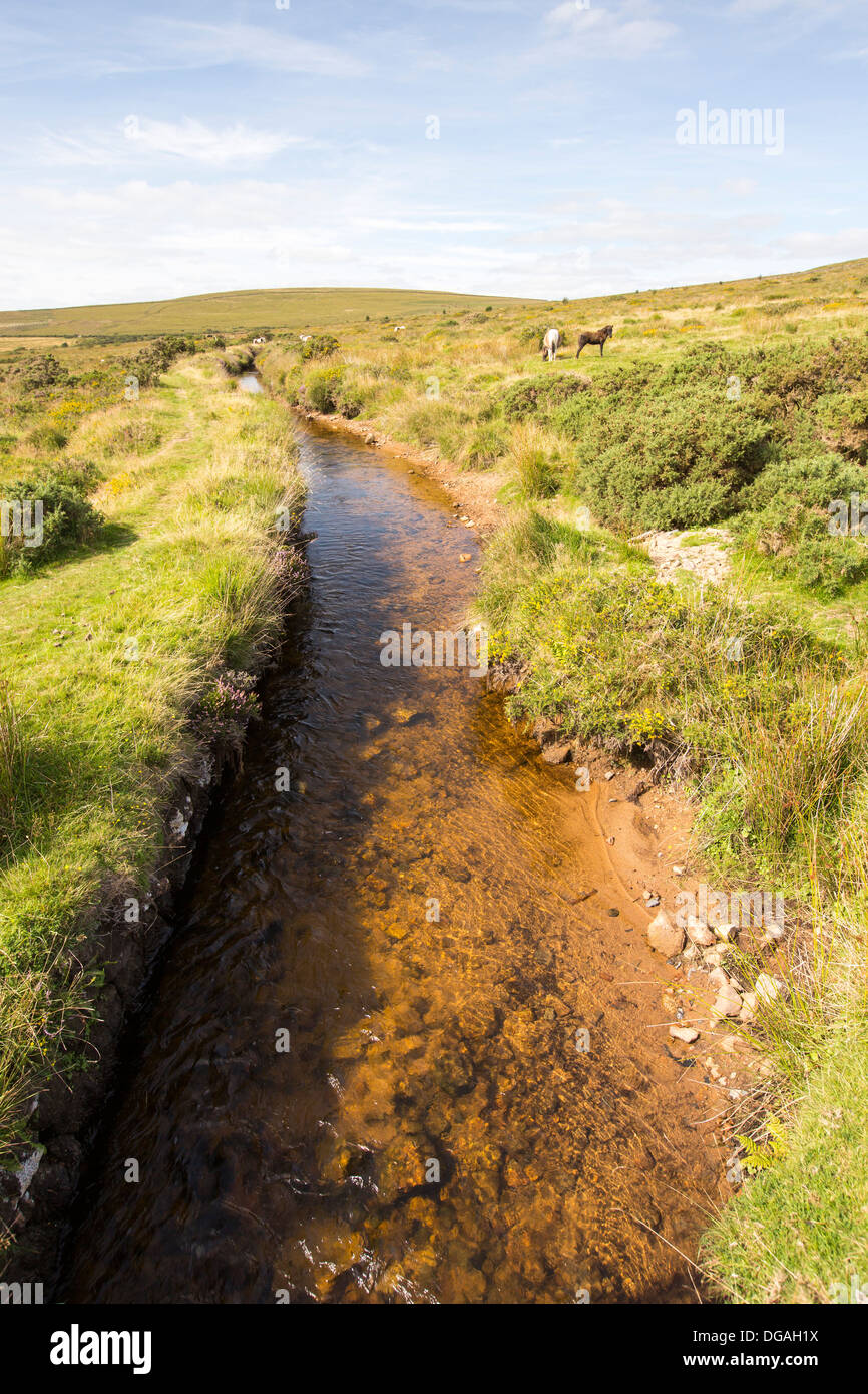 A leat leading off the River Tavy on Datmoor, Devon, UK. - Stock Image