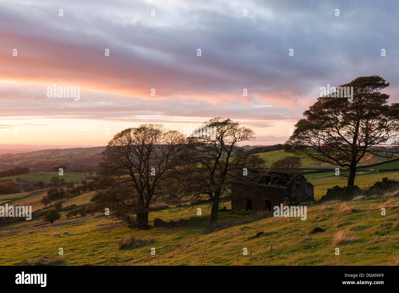 Barn ruin at Roach End on the edge of The Roaches, Staffordshire Moorlands. Taken in October at sundown - Stock Image