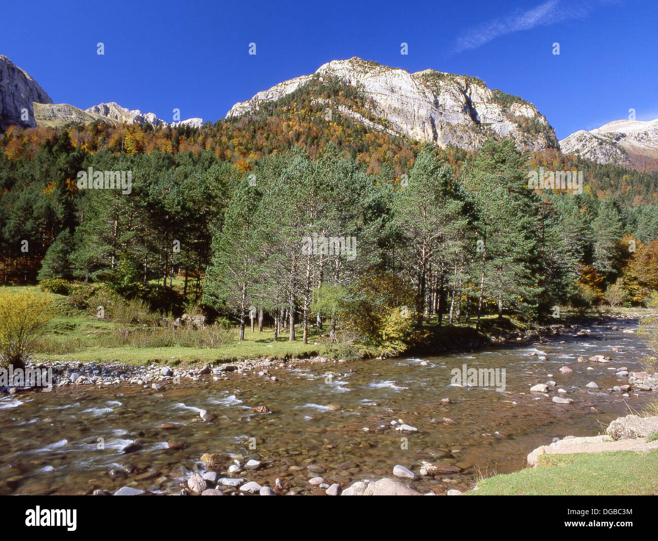 Aragon River And Selva De Oza Hecho Valley Pyrenees Mountains Stock Photo Alamy
