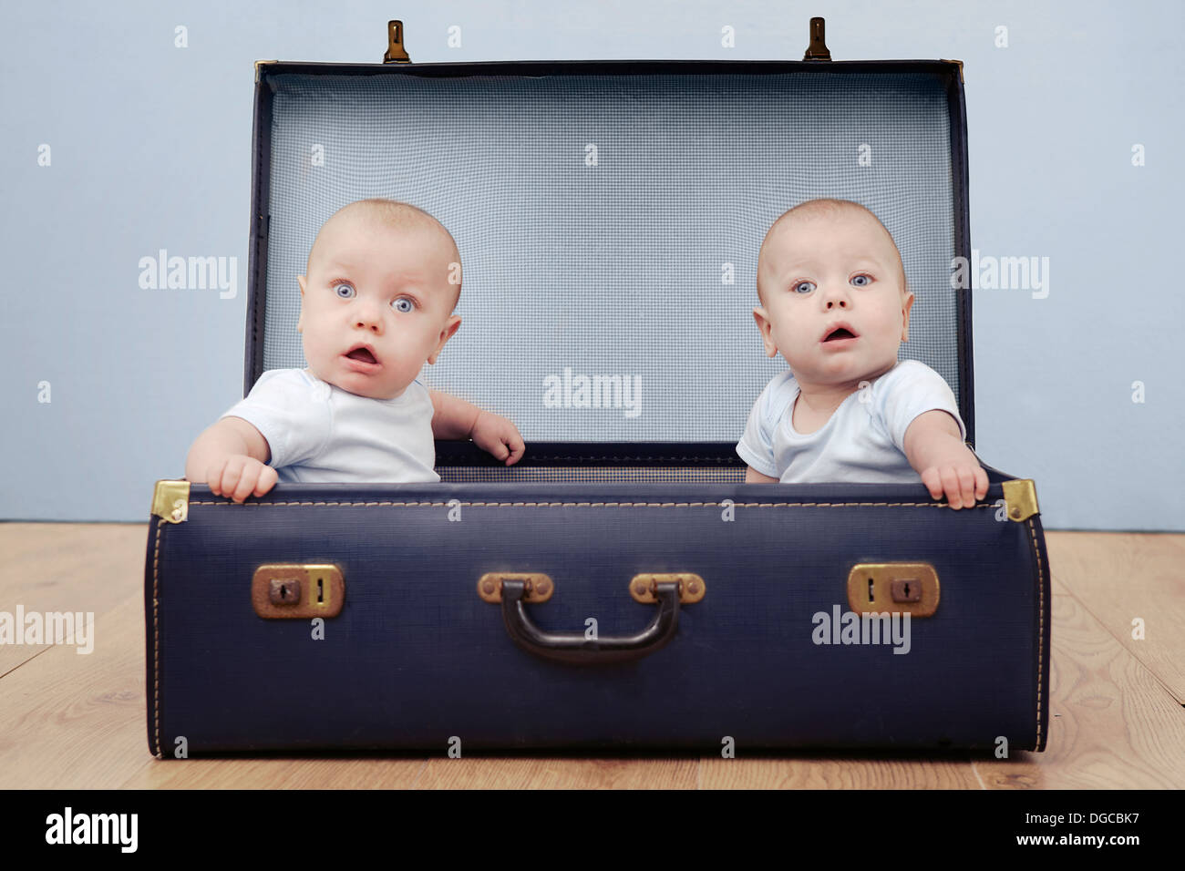 Two baby boys sitting in suitcase, portrait - Stock Image