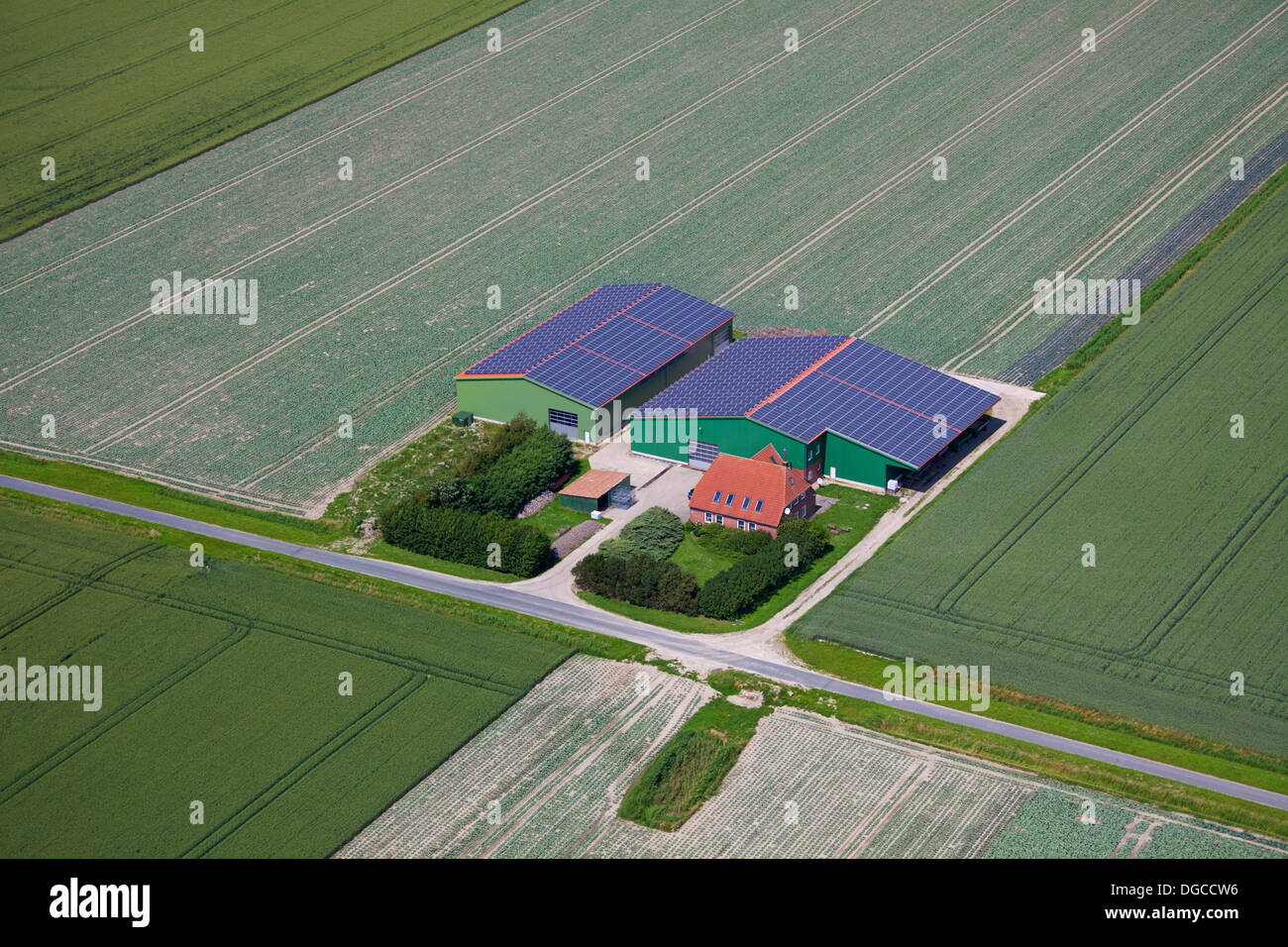 Aerial view over field and photovoltaic solar panels on roof of agricultural buildings for alternative power supply of farm - Stock Image