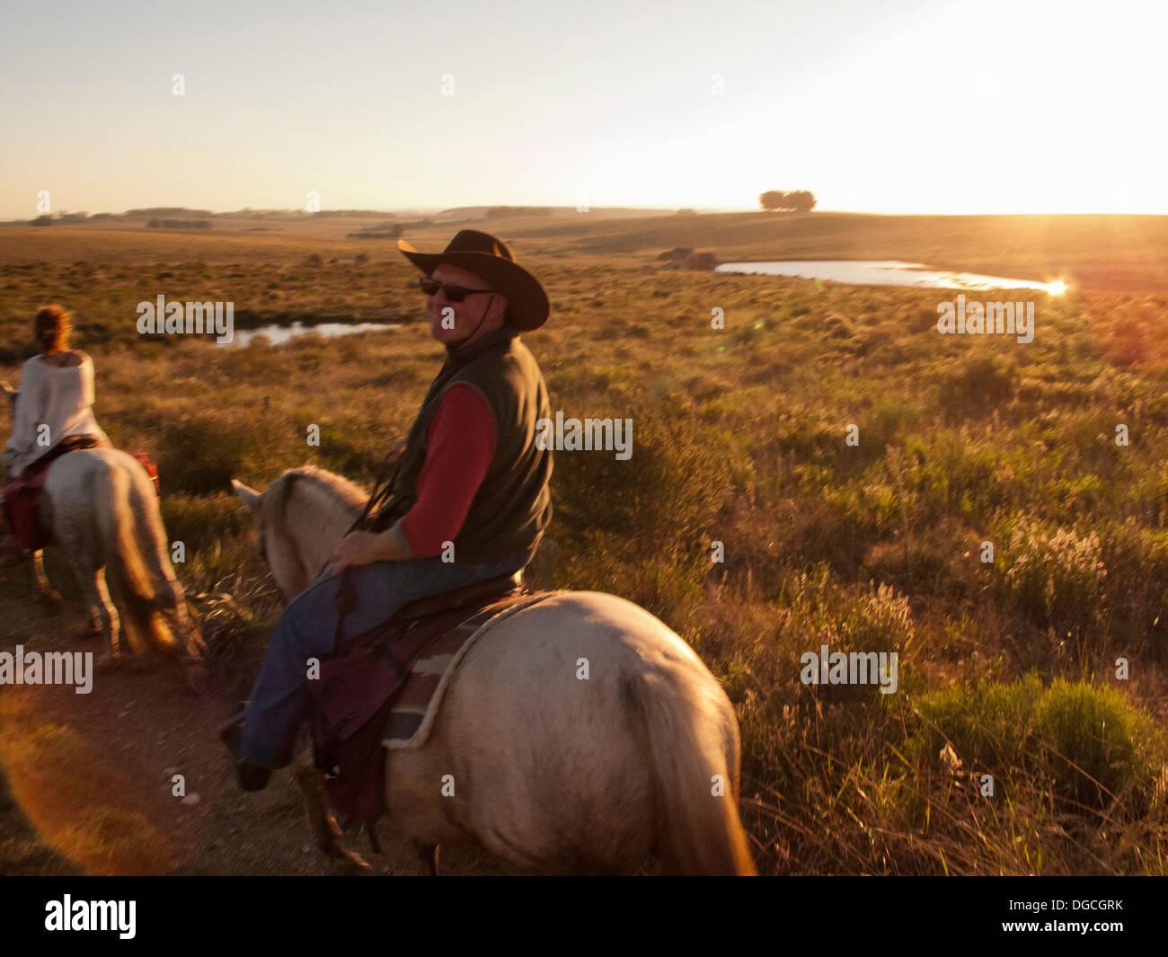Senior man riding a Criollo horse, Uruguay - Stock Image