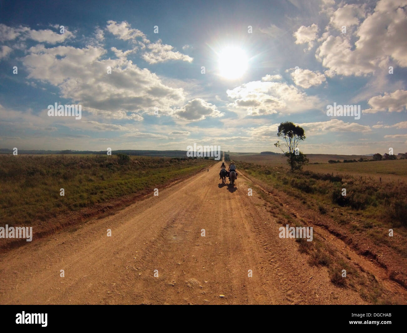Senior man riding horse on dirt track, Uruguay - Stock Image