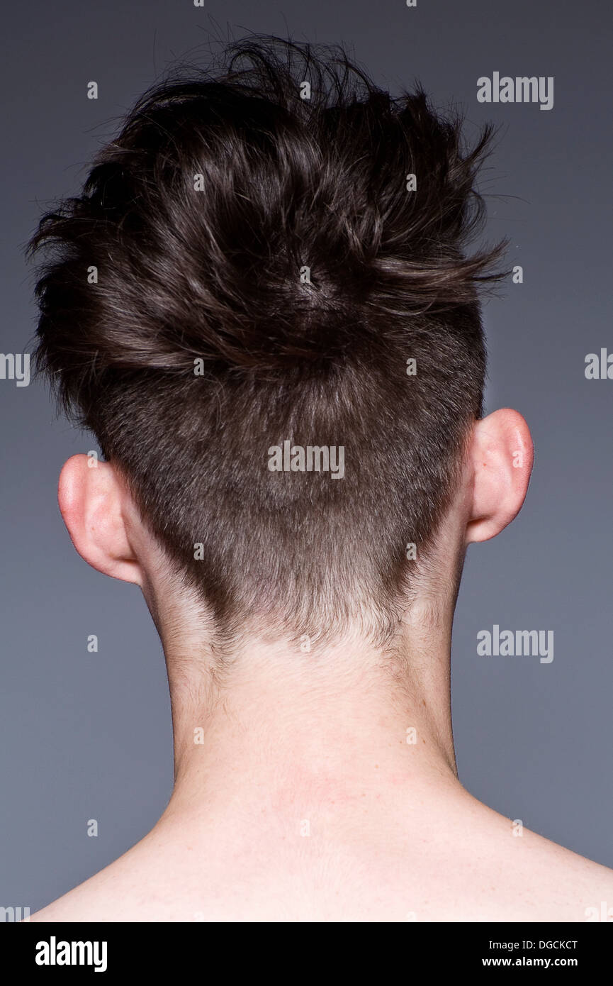 Close up of young man's hairstyle, rear view - Stock Image