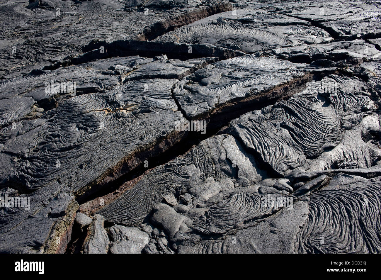 Cracked cooled lava Galapagos - Stock Image