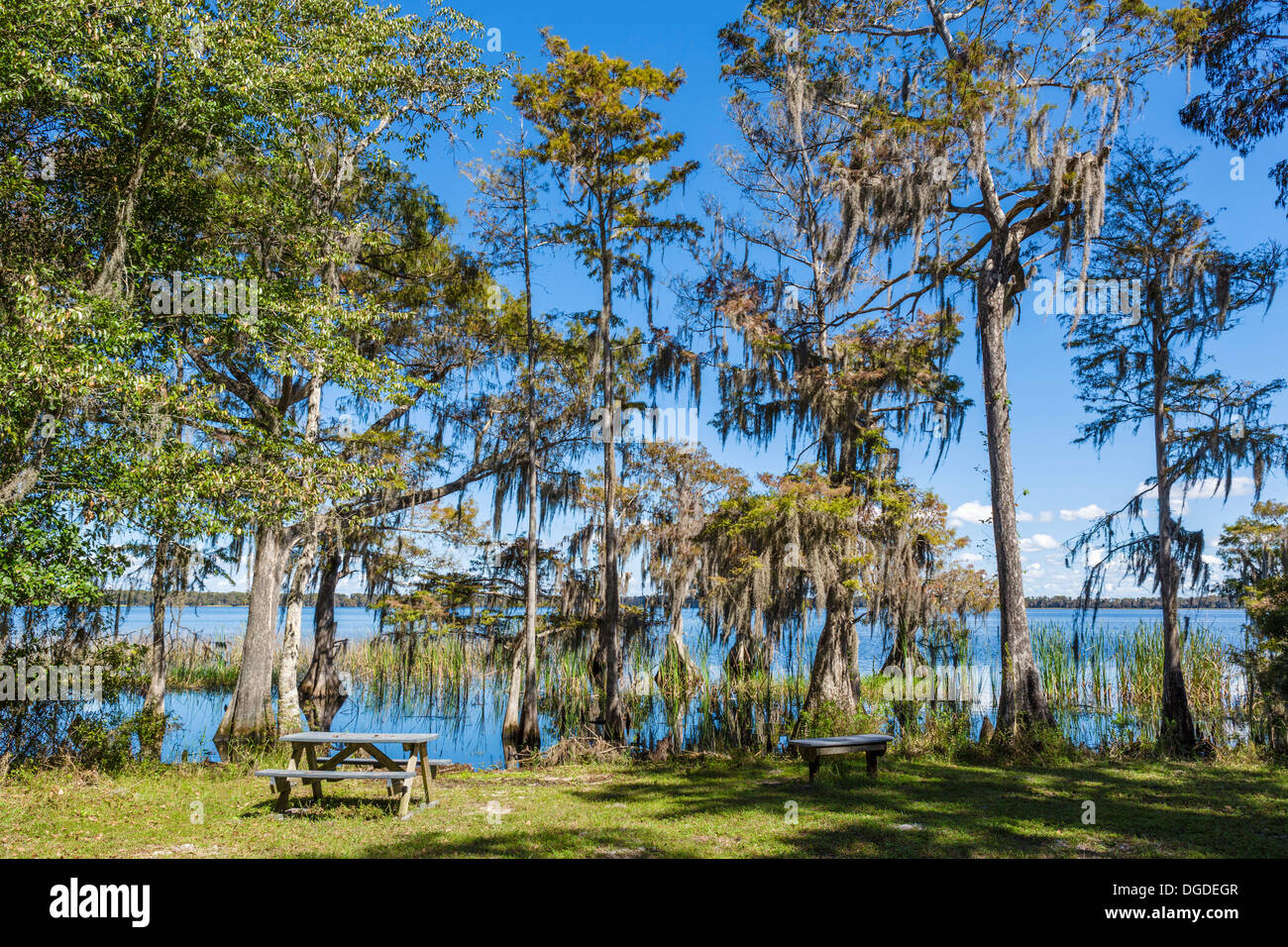 Picnic area at Lake Russell, Nature Conservancy Disney Wilderness Preserve, Poinciana, Kissimmee, near Orlando, Florida, USA - Stock Image