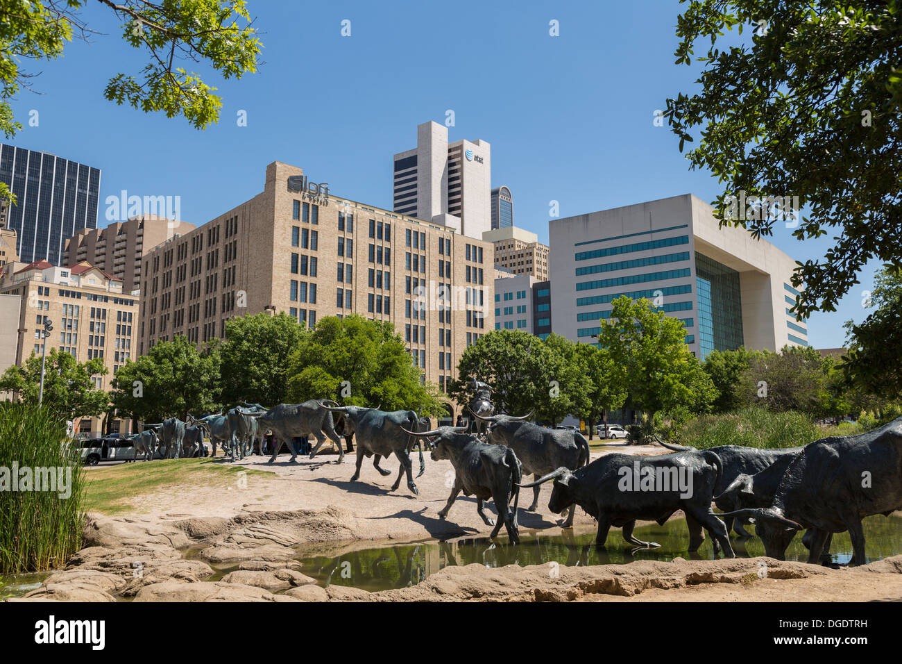 Bronze sculptures Cattle Drive Pioneer Plaza Dallas Texas USA - Stock Image