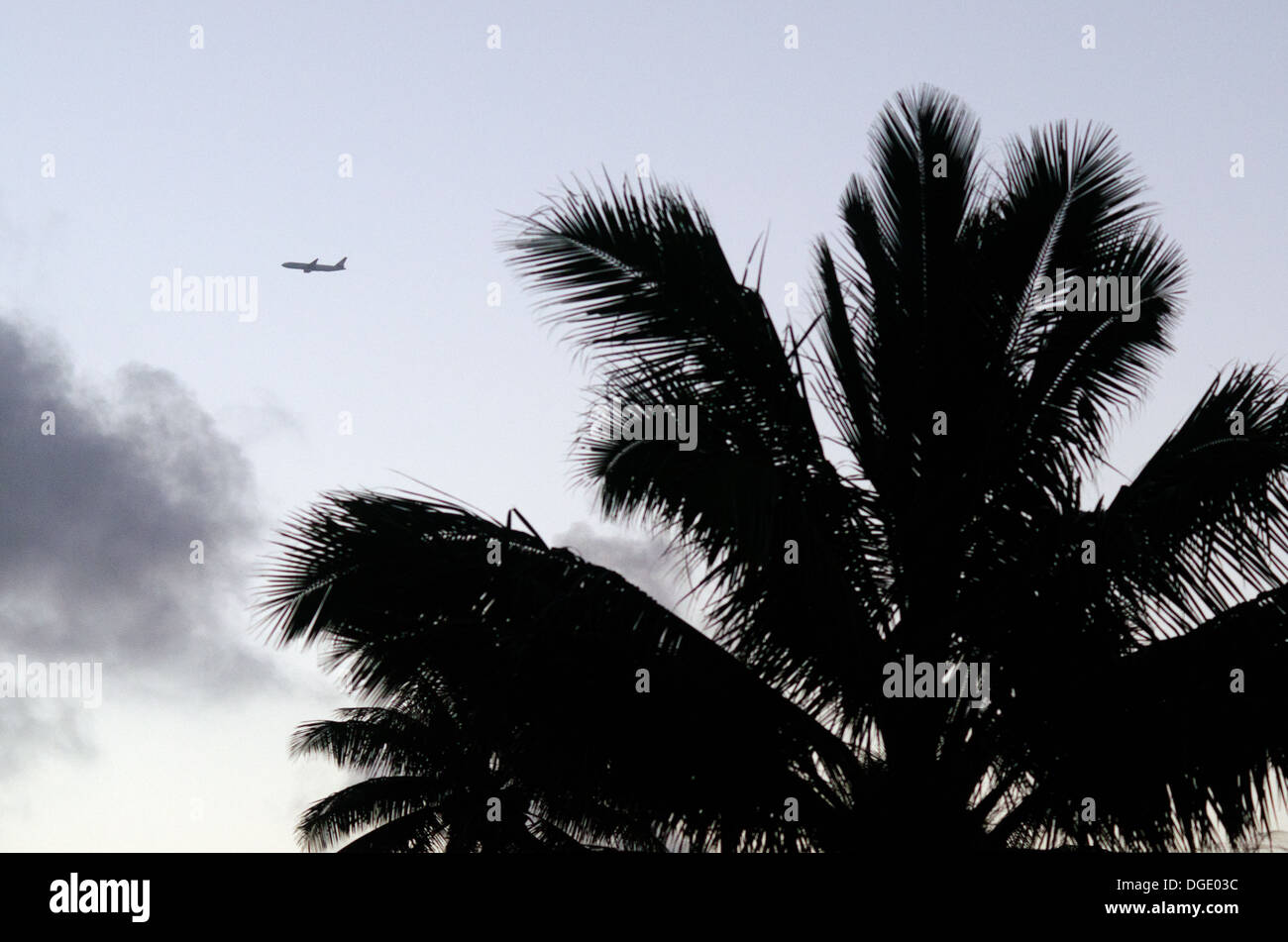 Silhouette of a coconut palm tree and a Jet plane departing / arriving from / tropical island during sunset / sunrise. - Stock Image