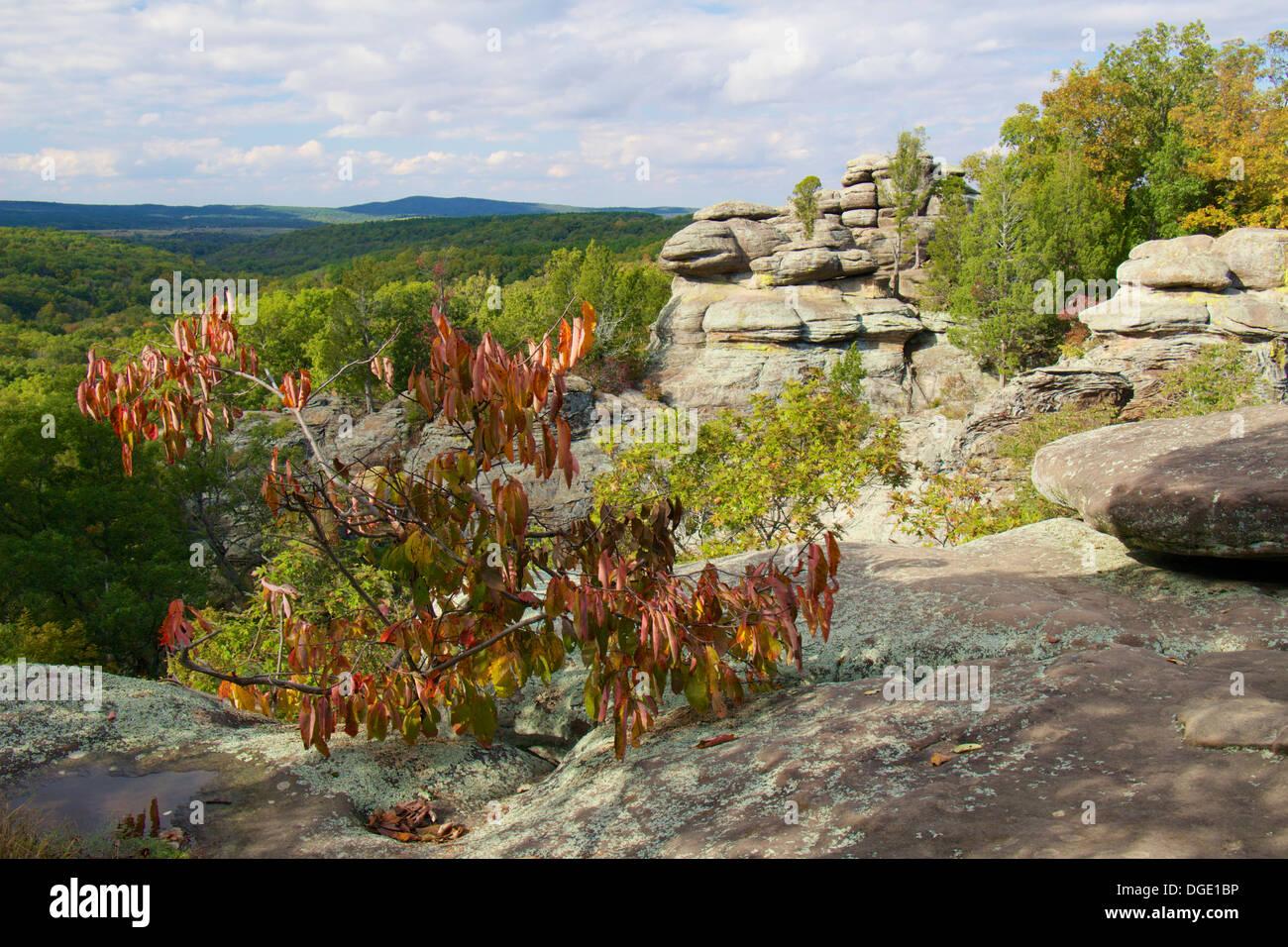 Garden of the Gods Recreation Area, southern Illinois. - Stock Image