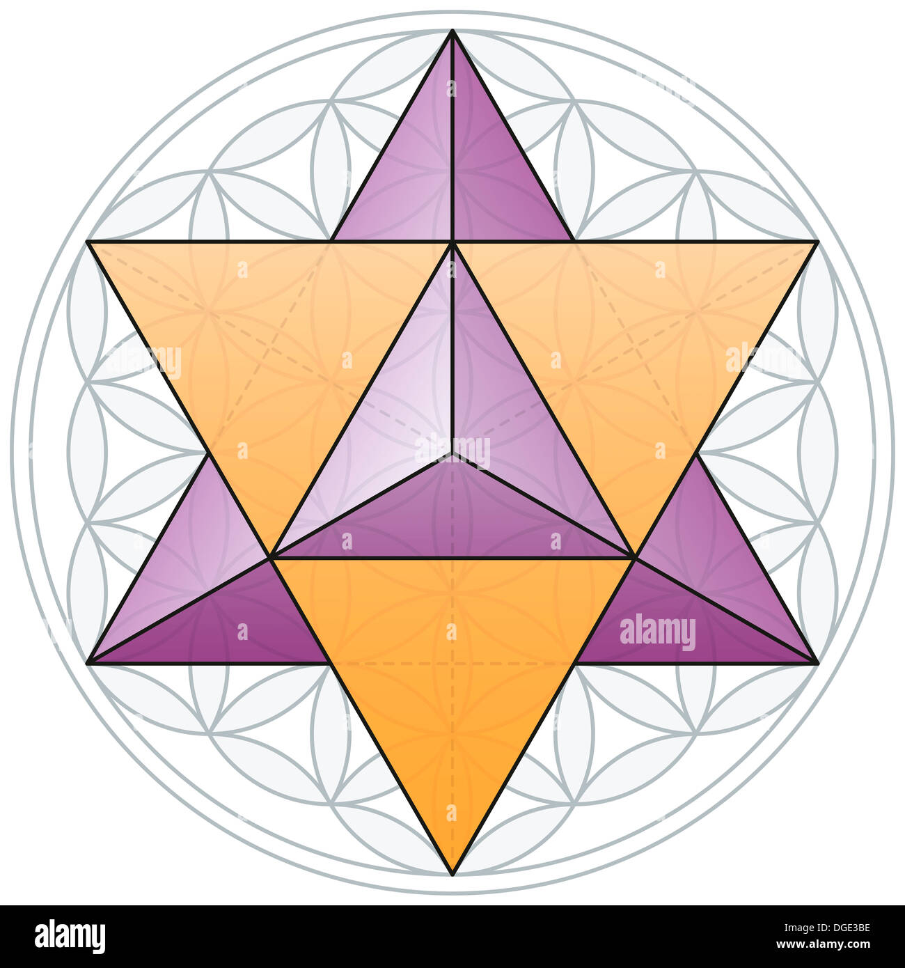 Merkaba, the double tetrahedron, fits in the Flower of Life, a geometrical figure - Stock Image