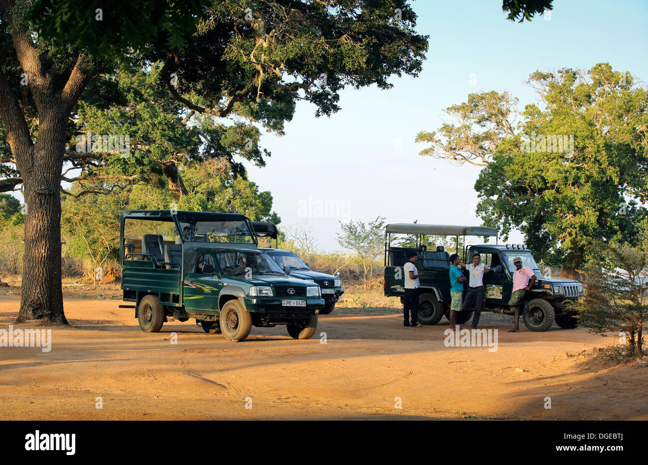 Wildlife safari jeep driver guides waiting for their clients in Yala National Park, Sri Lanka - Stock Image