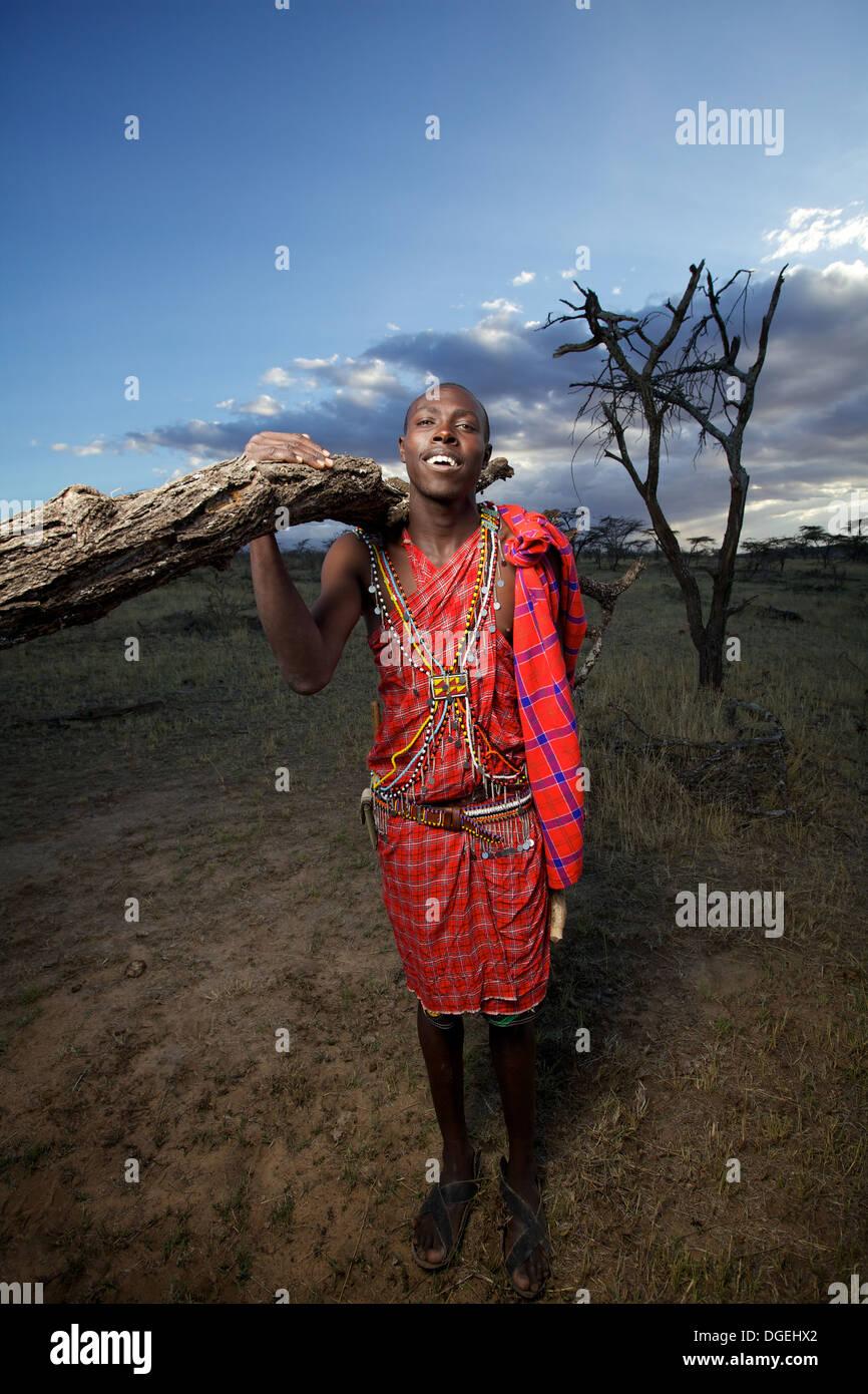 Maasai man collecting wood for fuel, Mara region, Kenya - Stock Image