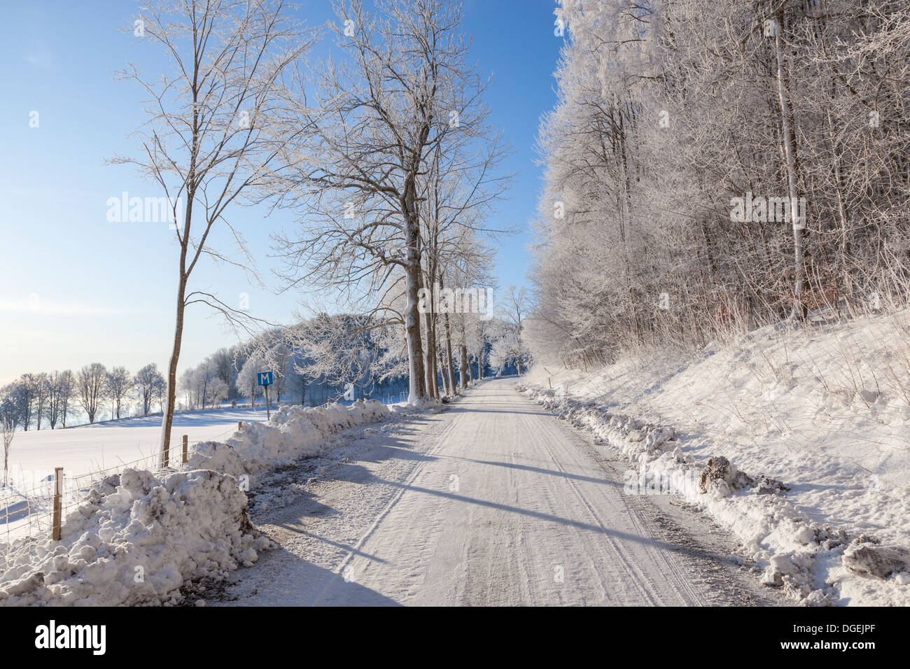 Country road through a wintry landscape - Stock Image