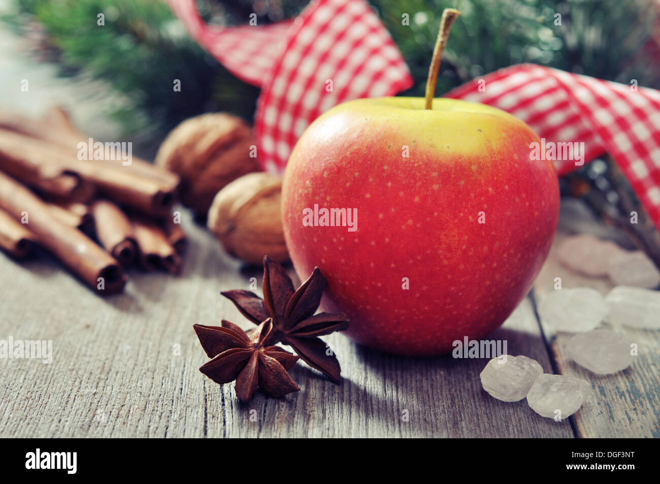 Red apple with spices and fir tree branch - Stock Image