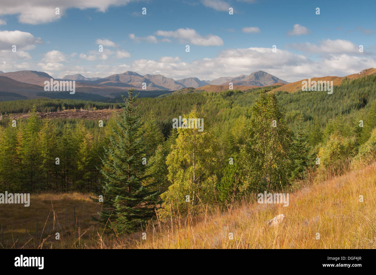 View west to mountains from between Loch Garry and Loch Loyne, autumn, Scottish Highlands - Stock Image