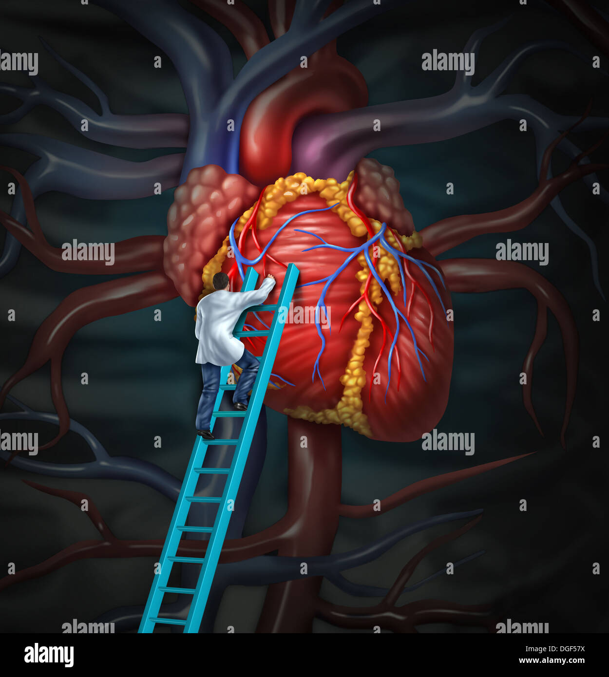 Heart doctor therapy health care and medical concept with a surgeon or cardiologist climbing a ladder to monitor and inspect the human cardiovascular anatomy for a hospital diagnosis treatment. - Stock Image