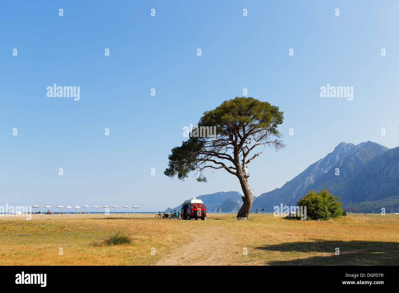 Beach of Olympos, VW van under a pine tree, Çıralı, Lycia, Province of Antalya, Turkey - Stock Image