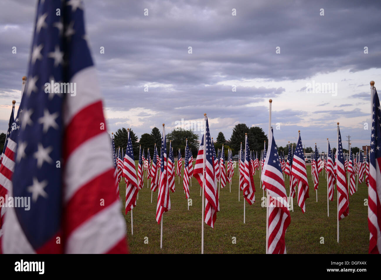 Many US Flags under a cloudy sky - Stock Image