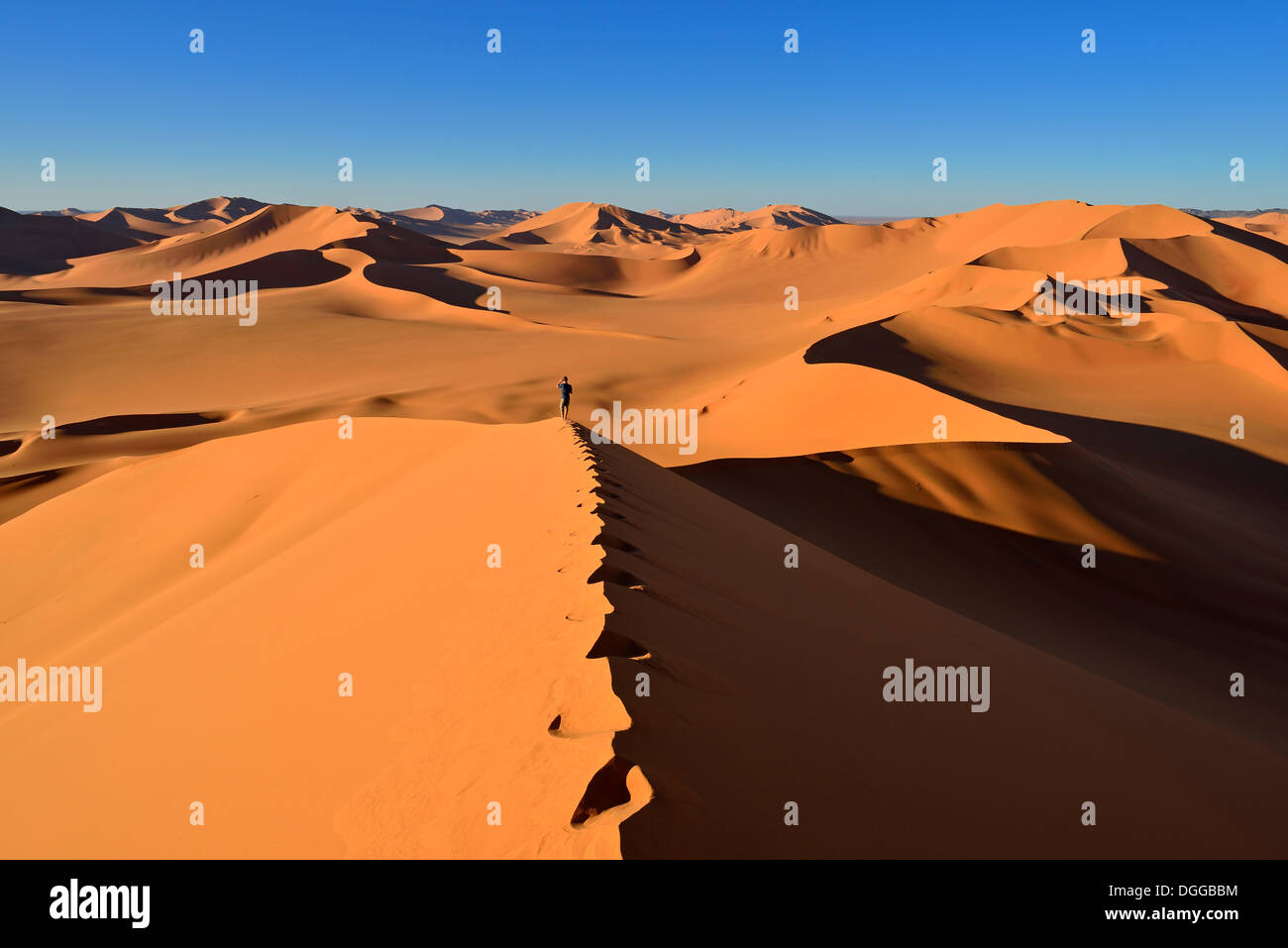 Person walking on a sand dune, Sahara Desert, Immidir or Mouydir, Erg Mehejibad, Tamanrasset Province, Algeria - Stock Image