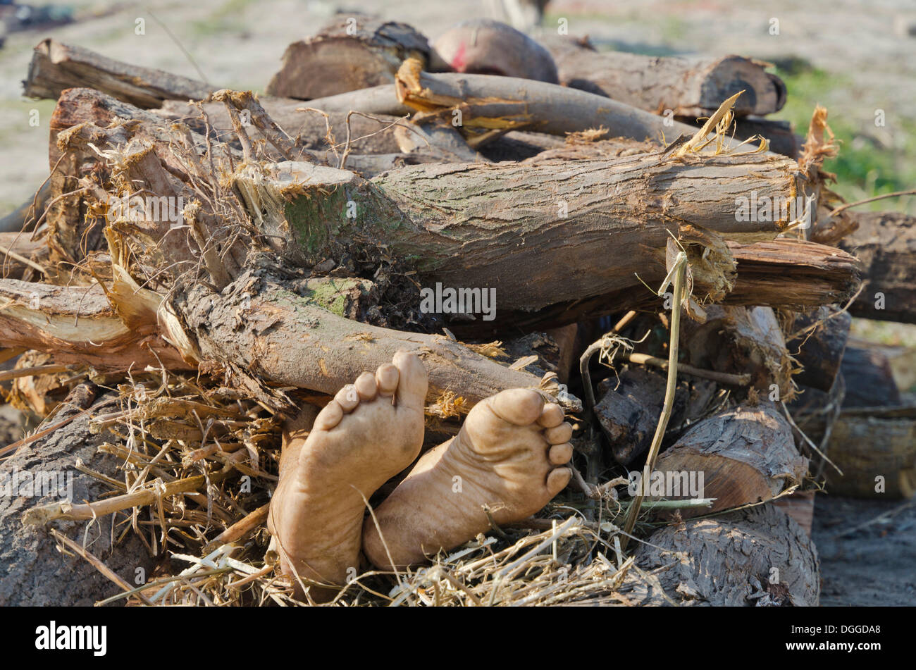 Putting a dead body on firewood on the banks of river Yamuna as part of a cremation ceremony, Vrindavan, India, Stock Photo