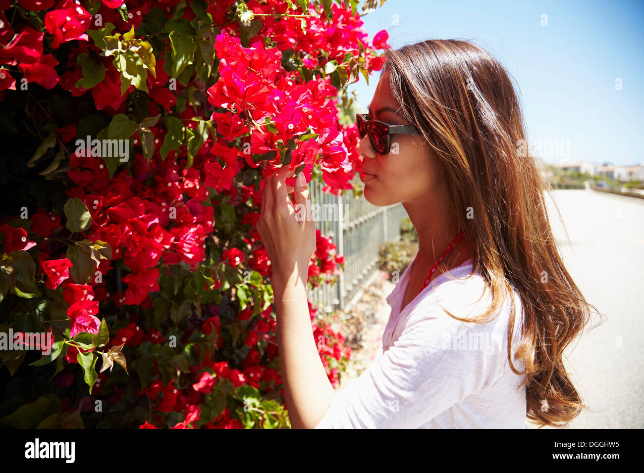 Young woman smelling flowers, Palos Verdes, California, USA - Stock Image