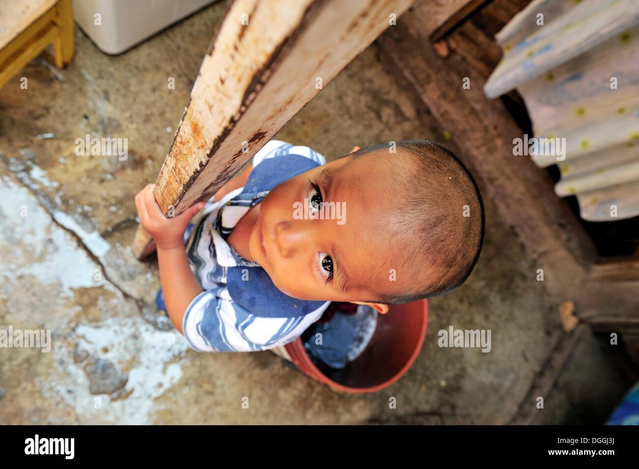 Boy in an indigenous community in a slum, Mexico City, Ciudad de Mexico, Mexico, Central America Stock Photo